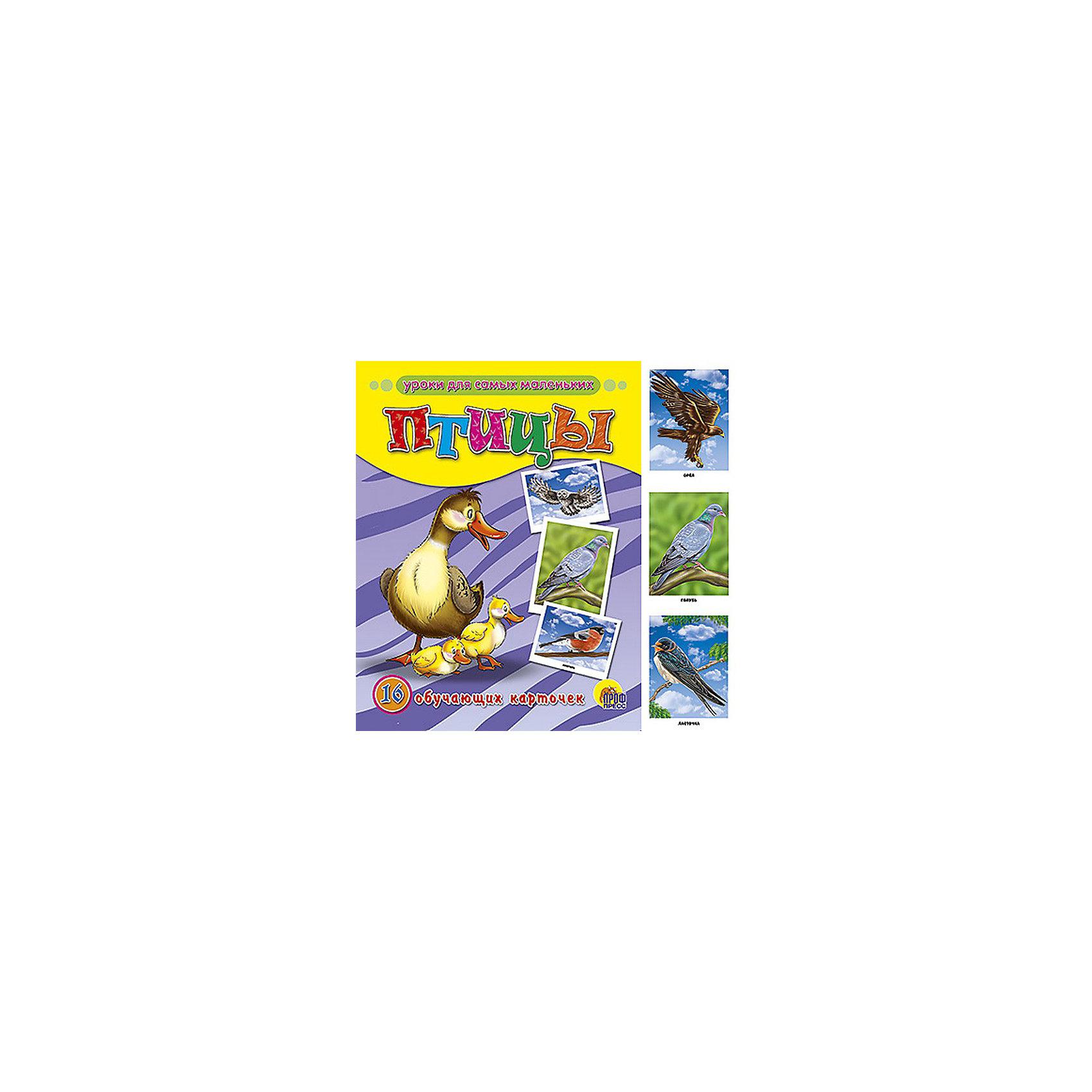 Обучающие карточки ПтицыПтицы, обучающие карточки  станет прекрасным занятием для Вашего малыша! Тематические карточки с цветными иллюстрациями. <br><br>Дополнительная информация:<br><br>Серия: Обучающие карточки <br>Переплет:Конв.  <br>Количество страниц: 16 Станет ярким и полезным подарком Вашему малышу!<br><br>Ширина мм: 170<br>Глубина мм: 220<br>Высота мм: 5<br>Вес г: 160<br>Возраст от месяцев: 24<br>Возраст до месяцев: 72<br>Пол: Унисекс<br>Возраст: Детский<br>SKU: 3321514