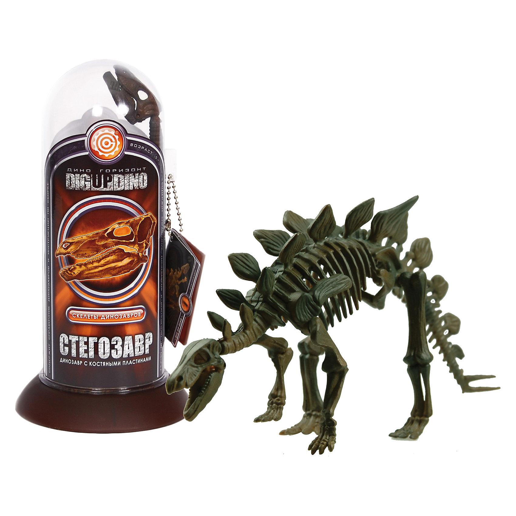 Раскопки: Стегозавр (Скелет самого крупного чешуйчатого динозавра)