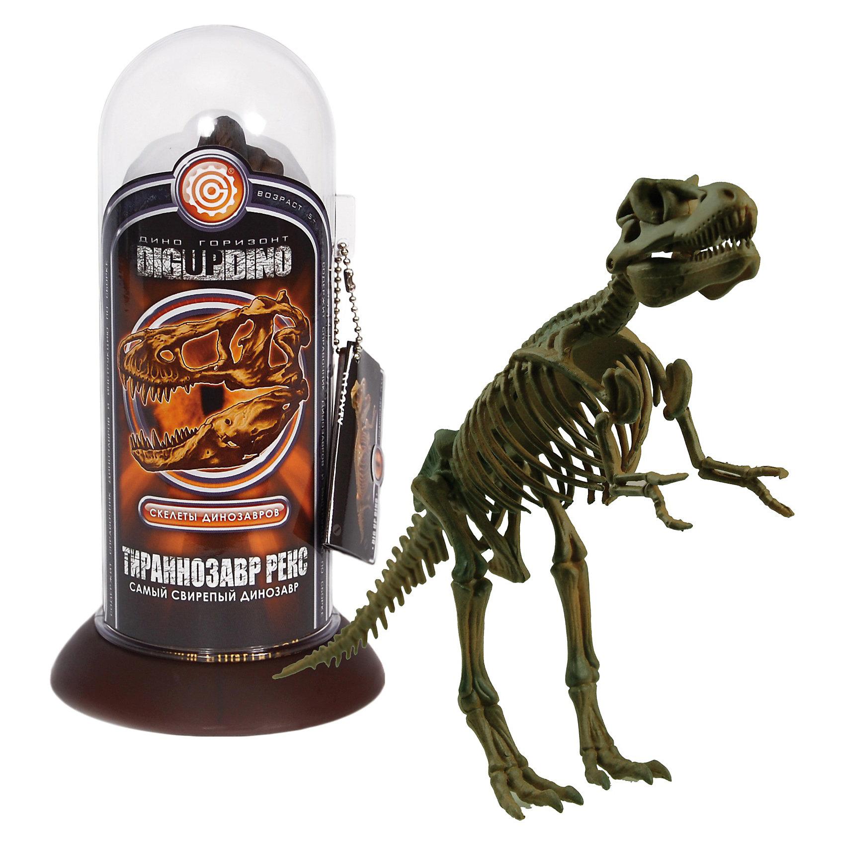 Раскопки: Тираннозавр Рекс (Скелет самого свирепого динозавра)Профессор Эйн - это серия увлекательных наборов для проведения различных опытов и экспериментов  в домашних условиях. <br><br>С помощью набора Раскопки: Тираннозавр Рекс (Скелет самого свирепого динозавра) вместе с профессором Эйном Вы можете почувствовать себя настоящим археологом.  Загадочный мир динозавров ведь это так интересно и интригующе! <br>  В наборе уменьшенная копия динозавра  Тираннозавр Рекс от греч.  — ящер, ящерица — род плотоядных динозавров конца мелового периода. Наиболее крупный и известный в популярной культуре представитель рода — Tyrannosaurus rex (T. rex, Ти-рекс), один из крупнейших наземных хищников.<br> <br>Наглядная модель скелета доисторического существа Стегозавра, полностью даст представление о его строении. <br><br>Соберите коллекцию из динозавров и почувствуйте себя настоящим исследователем древности. <br><br>Набор содержит справочник Профессора Эйна из останков динозавров.<br><br>Размеры: 9 х 18 х 9 см<br><br>Раскопки: Тираннозавр Рекс (Скелет самого свирепого динозавра) - можно купить в нашем интернет магазине.<br><br>Ширина мм: 90<br>Глубина мм: 90<br>Высота мм: 175<br>Вес г: 133<br>Возраст от месяцев: 60<br>Возраст до месяцев: 144<br>Пол: Мужской<br>Возраст: Детский<br>SKU: 3344334