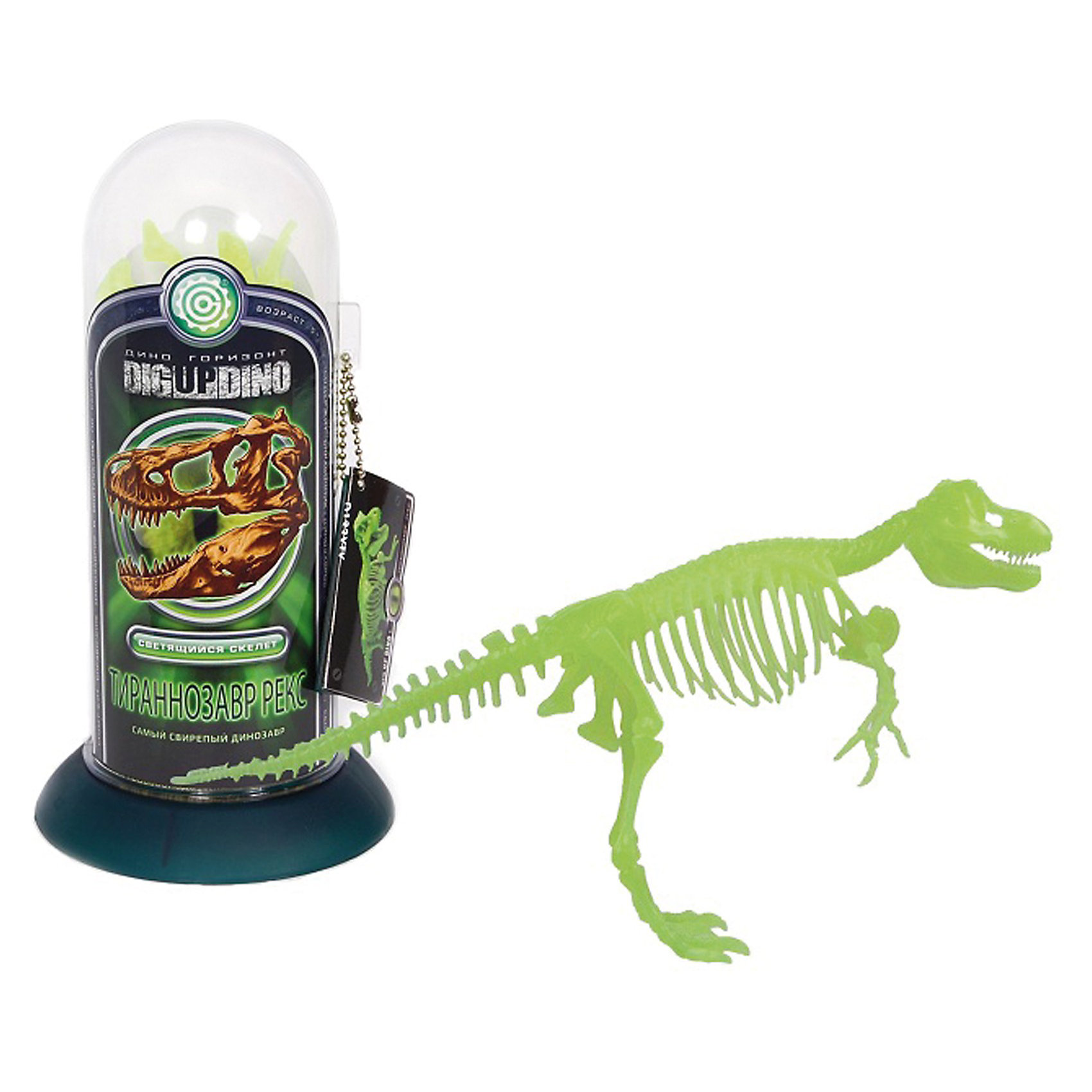Раскопки: Тираннозавр (Светящийся скелет самого свирепого динозавра)