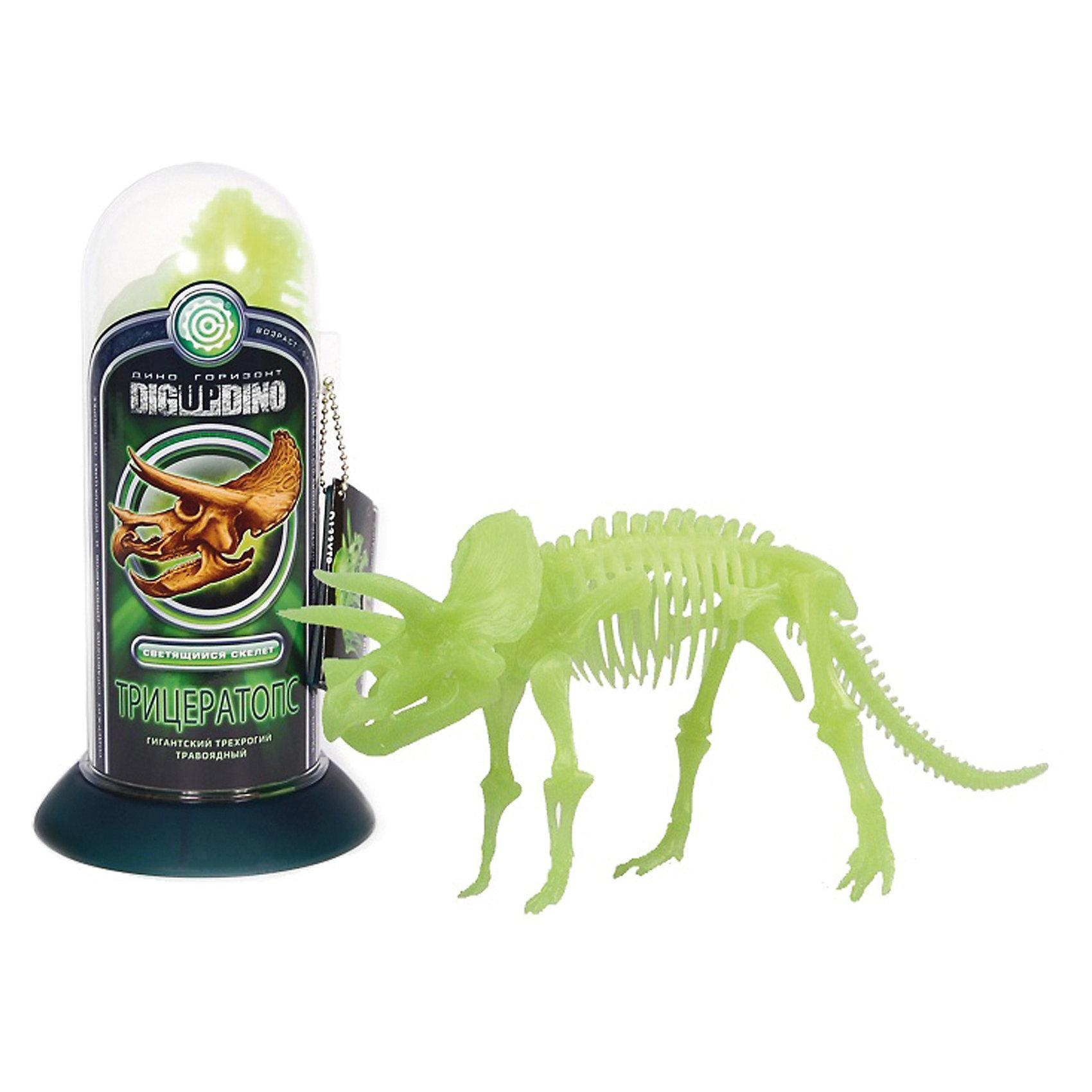 Раскопки: Трицератопс (Светящийся скелет - динозавра с тремя рогами)