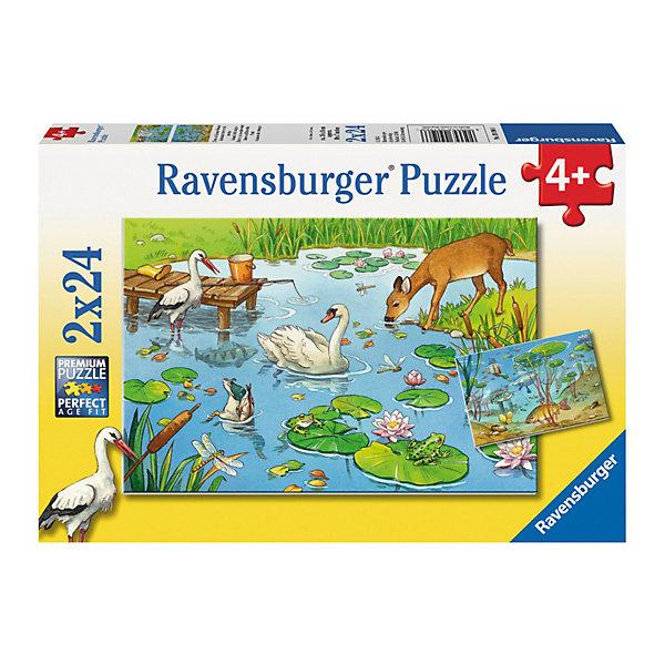 Набор пазлов «На пруду» 2х24 деталей, RavensburgerПазлы для малышей<br>Замечательный развивающий Набор пазлов «На пруду» 2х24 деталей, Ravensburger (Равенсбургер), несомненно, понравится Вашему ребенку и увлечет его в мир лесных и подводных животных. Собрав элементы вместе, получатся 2 оригинальные композиции, которые с разных сторон показывают жизнь вокруг тихого пруда. На одной картинке «вид сверху» – животные, пришедшие к пруду напиться. На другом изображении – подводное царство, полное рыб и водорослей. <br><br>Характеристики:<br>-Элементы идеально соединяются друг с другом, не отслаиваются с течением времени<br>-Высочайшее качество картона и полиграфии <br>-Матовая поверхность исключает отблески<br>-Развивает: память, мышление, внимательность, усидчивость, мелкая моторика<br>-Полезное и занимательное времяпрепровождение для всей семьи<br>-Для сохранения в собранном виде можно использовать скотч или специальный клей для пазлов (в комплект не входит)<br><br>Дополнительная информация:<br>-Материал: плотный картон, бумага<br>-Размер каждого собранного пазла: 26х18 см<br>-Размер упаковки: 28х19х4 см<br>-Вес упаковки: 0,3 кг<br><br>Сборка пазлов На пруду без сомнений увлечет любознательного ребенка, а в результате у него получится собрать две красочные картины!<br><br>Набор пазлов «На пруду» 2х24 деталей, Ravensburger (Равенсбургер) можно купить в нашем магазине.<br><br>Ширина мм: 279<br>Глубина мм: 195<br>Высота мм: 38<br>Вес г: 279<br>Возраст от месяцев: 48<br>Возраст до месяцев: 72<br>Пол: Унисекс<br>Возраст: Детский<br>Количество деталей: 24<br>SKU: 3412905