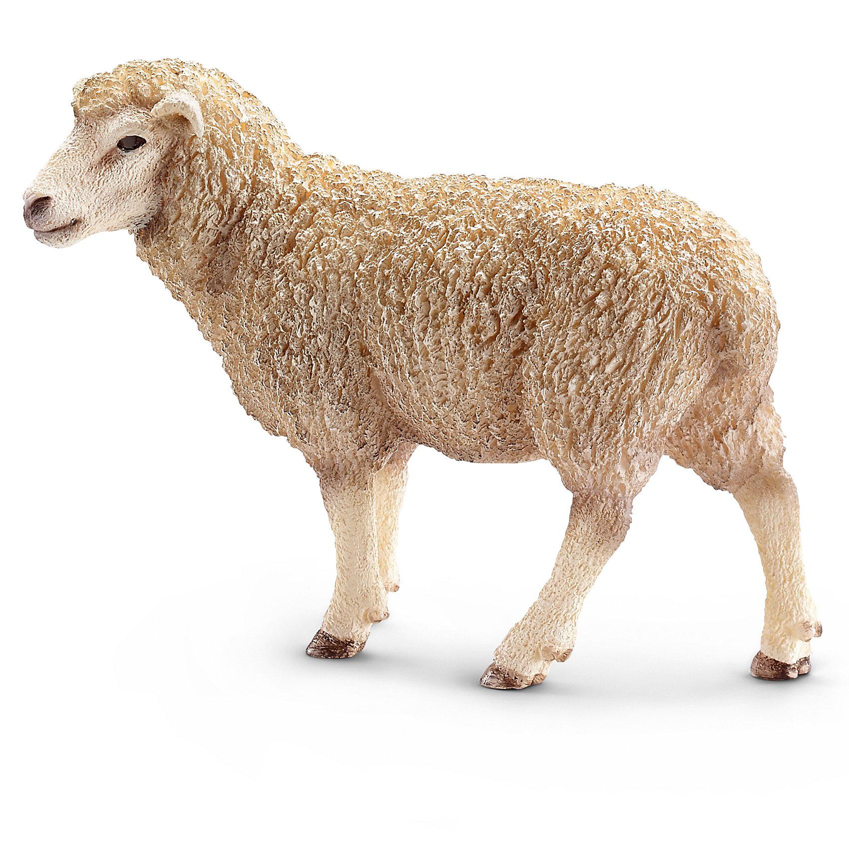 Овца, SchleichМир животных<br>Овца, Schleich (Шляйх) -   коллекционная и игровая фигурка от немецкого производителя Schleich (Шляйх).<br>Фигурка Овцы прекрасно разнообразит игру вашего ребенка и станет отличным пополнением коллекции его фигурок домашних животных. Овечка со шкурой молочного цвета легко поместится в маленьких детских ручках и будет удобна для игры. Овцы используются в домашнем хозяйстве на протяжении многих веков. С их помощью люди получали мясо и шерсть. Существует несколько пород овец и все они отличаются по окрасу и размерам. Вес овец составляет от 45 до 180 кг. Овцы обладают достаточно ограниченным зрением и видят хорошо только перед собой, при этом, у них очень острый слух, но перемещаться они могут, в основном, за пастухом или следуя его командам. Все фигурки Schleich (Шляйх) сделаны из гипоаллергенных высокотехнологичных материалов, раскрашены вручную и не вызывают аллергии у ребенка. Прекрасно выполненные фигурки Schleich (Шляйх) отличаются высочайшим качеством игрушек ручной работы. Все они создаются при постоянном сотрудничестве с Берлинским зоопарком, а потому, являются максимально точной копией настоящих животных. Каждая фигурка разработана с учетом исследований в области педагогики и производится как настоящее произведение для маленьких детских ручек.<br><br>Дополнительная информация:<br><br>-Размер фигурки: 3,6 х 8,9 х 6,6 см.<br>-Вес фигурки: 18 грамм<br>-Материал: каучуковый пластик<br><br>Овца, Schleich (Шляйх) - подарит вашему ребенку радость и поможет знакомиться с окружающим миром.<br><br>Фигурку Овцы, Schleich (Шляйх) можно купить в нашем интернет-магазине.<br><br>Ширина мм: 84<br>Глубина мм: 83<br>Высота мм: 39<br>Вес г: 47<br>Возраст от месяцев: 36<br>Возраст до месяцев: 96<br>Пол: Унисекс<br>Возраст: Детский<br>SKU: 3443113
