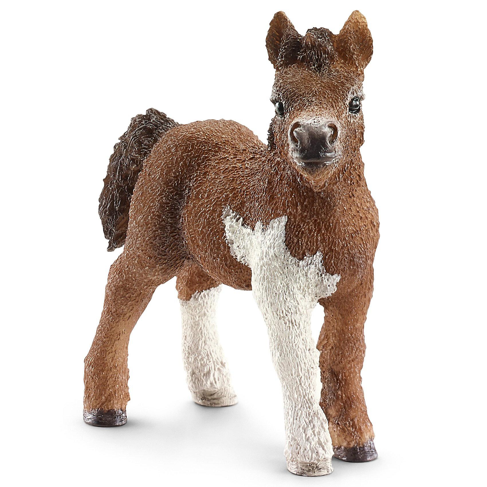Жеребенок Шетландского пони, SchleichЖеребенок Шетландского пони, Schleich (Шляйх) - коллекционная и игровая фигурка от немецкого производителя Schleich (Шляйх).<br>Фигурка очаровательного жеребенка породы Шетланд пони разнообразит игру вашего ребенка и станет достойным пополнением коллекции его фигурок лошадей. Пони породы Шетланд назван в честь острова неподалеку от Шотландии. Они очень выносливы и использовались в сельском хозяйстве и горнодобывающей промышленности в холодном суровом климате. Сейчас эту породу лошадей можно увидеть в зоопарках, цирках, они используются для занятий с детьми и взрослыми, поскольку отличаются спокойными и плавными движениями. Все фигурки Schleich (Шляйх) сделаны из гипоаллергенных высокотехнологичных материалов, раскрашены вручную и не вызывают аллергии у ребенка. Прекрасно выполненные фигурки Schleich (Шляйх) отличаются высочайшим качеством игрушек ручной работы. Все они создаются при постоянном сотрудничестве с Берлинским зоопарком, а потому, являются максимально точной копией настоящих животных. Каждая фигурка разработана с учетом исследований в области педагогики и производится как настоящее произведение для маленьких детских ручек.<br><br>Дополнительная информация:<br><br>-Размер фигурки: 2,5 x 6,6 x 6,1 см.<br>-Вес фигурки: 9 грамм<br>-Материал: каучуковый пластик<br><br>Жеребенок Шетландского пони, Schleich (Шляйх) - ваш ребенок будет наслаждаться игрой с новой восхитительной игрушкой.<br><br>Фигурку Жеребенка Шетландского пони, Schleich (Шляйх) можно купить в нашем интернет-магазине.<br><br>Ширина мм: 86<br>Глубина мм: 71<br>Высота мм: 30<br>Вес г: 17<br>Возраст от месяцев: 36<br>Возраст до месяцев: 96<br>Пол: Женский<br>Возраст: Детский<br>SKU: 3443122