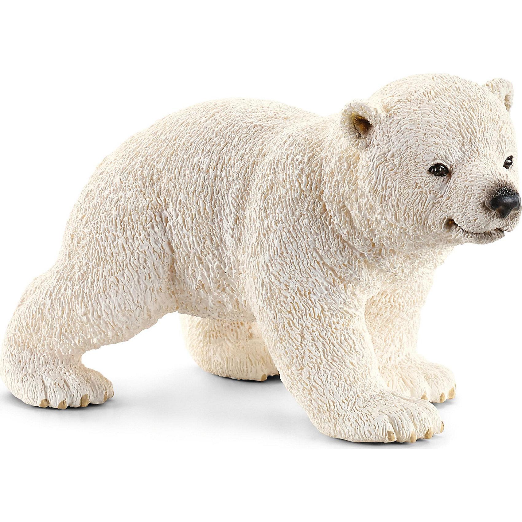 Белый медвежонок, SchleichМир животных<br>Белый медвежонок, Schleich (Шляйх) - коллекционная и игровая фигурка от немецкого производителя Schleich (Шляйх).<br>Фигурка очаровательного белого медвежонка с черными глазками обязательно понравится вашему ребенку и станет прекрасным дополнением его коллекции фигурок от Schleich (Шляйх). Белые медведи, как и медведи Гризли, являются одними из самых крупных хищников на планете, их длина составляет 3 метра. Благодаря толстому слою жира и плотной шкуре, они способны выдерживать экстремально низкие температуры арктического холода. Это также позволяет им плавать в воде нулевой температуры и добывать себе рыбу. Белые медведи прекрасные пловцы и имеют очень чуткий нюх. Все фигурки Schleich (Шляйх) сделаны из гипоаллергенных высокотехнологичных материалов, раскрашены вручную и не вызывают аллергии у ребенка. Прекрасно выполненные фигурки Schleich (Шляйх) отличаются высочайшим качеством игрушек ручной работы. Все они создаются при постоянном сотрудничестве с Берлинским зоопарком, а потому, являются максимально точной копией настоящих животных. Каждая фигурка разработана с учетом исследований в области педагогики и производится как настоящее произведение для маленьких детских ручек.<br><br>Дополнительная информация:<br><br>-Размер фигурки: 4,1 x 6,6 x 4,1 см.<br>-Вес фигурки: 9 грамм<br>-Материал: каучуковый пластик<br><br>Белый медвежонок, Schleich (Шляйх) - ваш ребенок будет наслаждаться игрой с новой восхитительной игрушкой.<br><br>Фигурку Белого медвежонка, Schleich (Шляйх) можно купить в нашем интернет-магазине.<br><br>Ширина мм: 73<br>Глубина мм: 50<br>Высота мм: 35<br>Вес г: 29<br>Возраст от месяцев: 36<br>Возраст до месяцев: 96<br>Пол: Унисекс<br>Возраст: Детский<br>SKU: 3443135