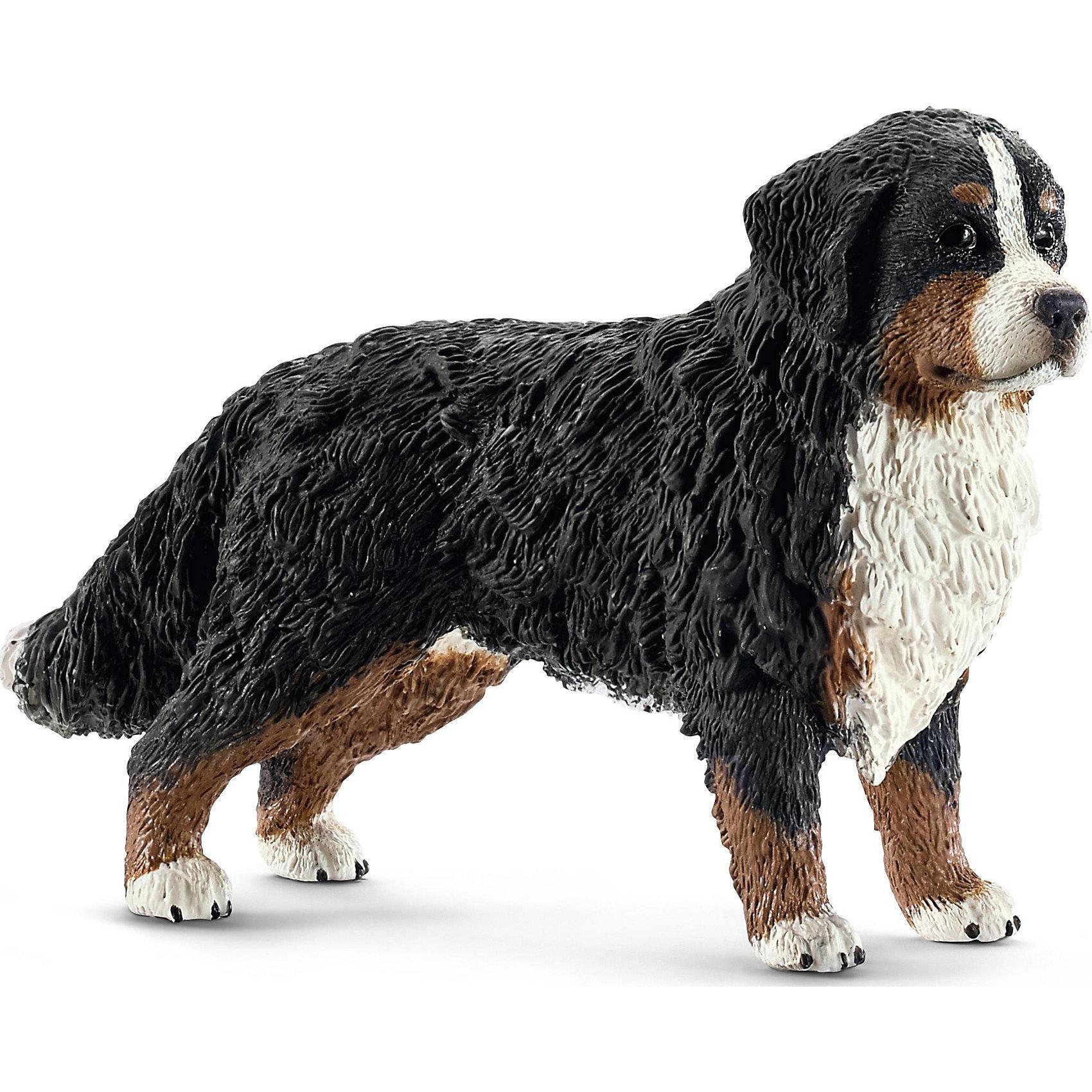 Бернский Зенненхунд, SchleichМир животных<br>Бернский Зенненхунд, Schleich (Шляйх) - коллекционная и игровая фигурка от немецкого производителя Schleich (Шляйх).<br>Фигурка собаки породы Бернский Зенненхунд обязательно порадует всех любителей собак и разнообразит игры вашего ребенка. Бернский Зенненхунд является одной из самых популярных и любимых многими породой собак. Они прекрасно поддаются дрессировке, очень общительны и дружелюбны. Все фигурки Schleich (Шляйх) сделаны из гипоаллергенных высокотехнологичных материалов, раскрашены вручную и не вызывают аллергии у ребенка. Прекрасно выполненные фигурки Schleich (Шляйх) отличаются высочайшим качеством игрушек ручной работы. Все они создаются при постоянном сотрудничестве с Берлинским зоопарком, а потому, являются максимально точной копией настоящих животных. Каждая фигурка разработана с учетом исследований в области педагогики и производится как настоящее произведение для маленьких детских ручек.<br><br>Дополнительная информация:<br><br>-Размер фигурки: 7,9 x 2,5 x 5,1 см.<br>-Вес фигурки: 9 грамм<br>-Материал: каучуковый пластик<br><br>Бернский Зенненхунд, Schleich (Шляйх) - ваш ребенок будет наслаждаться игрой с новой восхитительной игрушкой.<br><br>Фигурку собаки породы Бернский Зенненхунд, Schleich (Шляйх) можно купить в нашем интернет-магазине.<br><br>Ширина мм: 121<br>Глубина мм: 53<br>Высота мм: 22<br>Вес г: 31<br>Возраст от месяцев: 36<br>Возраст до месяцев: 96<br>Пол: Унисекс<br>Возраст: Детский<br>SKU: 3443156