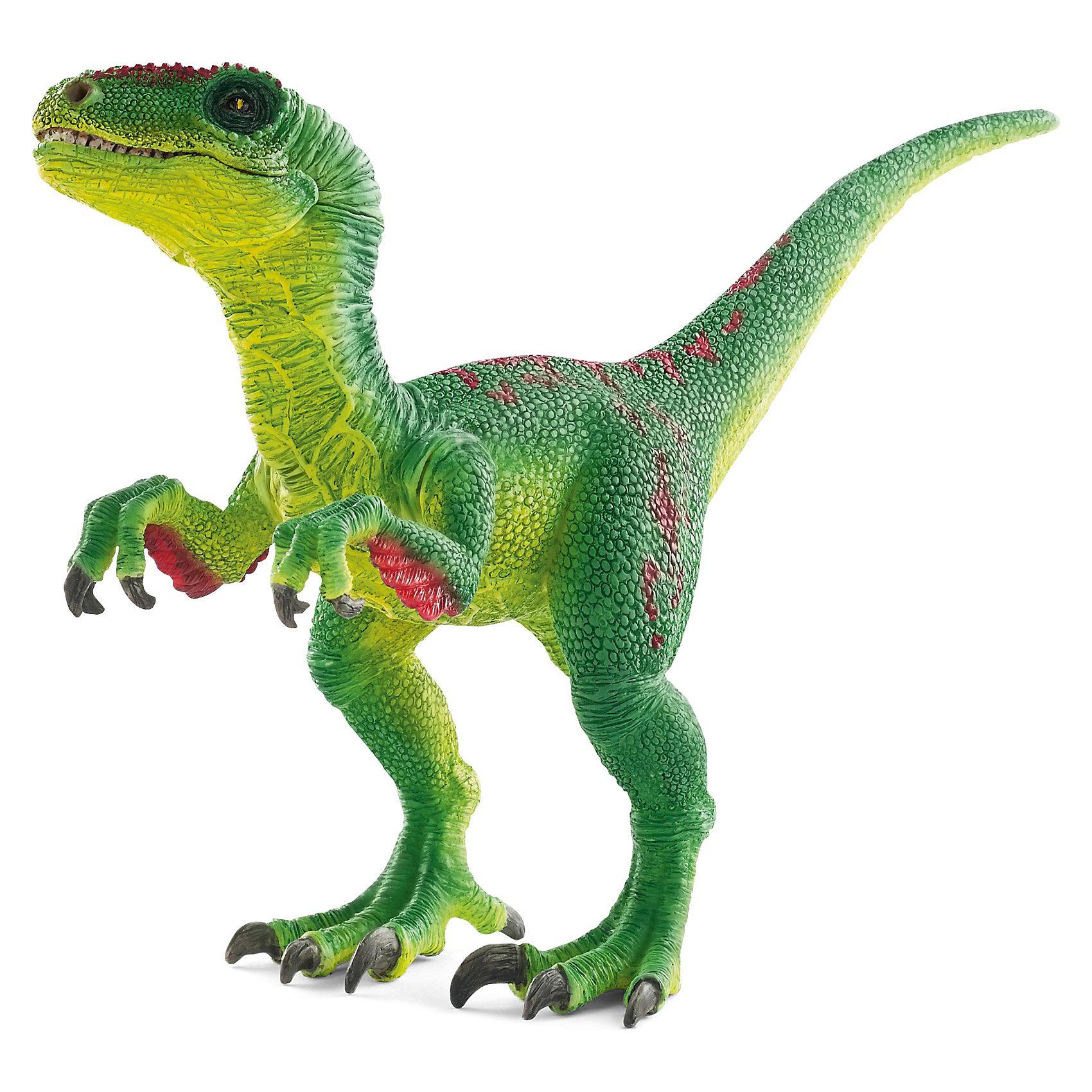 Велоцираптор, SchleichВелоцирапторы - древние хищники, охотившиеся стаями. Эти динозавры обитали на Земле в доисторический период. Быстрый и ловкий велоцираптор не отличался внушительными размерами (всего около 60 см в высоту), однако, у него на обоих ногах имелся большой серповидный коготь длиной до 7.5 см, который помогал ему добывать пищу и обороняться.<br>Эти динозавры могли бегать со скоростью до 65 километров в час, а хвост они использовали для выполнения скоростных маневров. В пасти этого динозавра было до восьмидесяти острых и изогнутых зубов длиною до 2,5 сантиметров.  <br>Изящный динозавр зеленого цвета, стоящий на задних лапах, станет достойным пополнением уникальной коллекции фигурок Schleich. У фигурки подвижная нижняя челюсть и передние лапы, что позволяет устраивать увлекательные игры с забавными существами.<br><br>Дополнительная информация:<br><br>- Размер: 5,1 x 15,7 x 10,2 см<br>- Материал: каучуковый пластик<br><br>Фигурку Велоцираптора, Schleich (Шляйх) можно купить в нашем магазине.<br><br>Ширина мм: 113<br>Глубина мм: 118<br>Высота мм: 56<br>Вес г: 60<br>Возраст от месяцев: 36<br>Возраст до месяцев: 96<br>Пол: Мужской<br>Возраст: Детский<br>SKU: 3539484