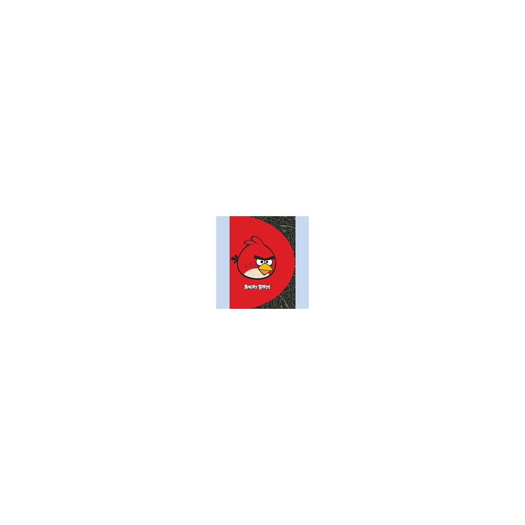 Папка на 20 файлов, А4, Angry birds, CENTRUM