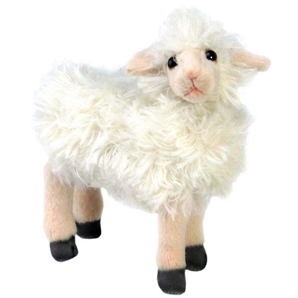Овечка белая, 17 см,  HansaМягкие игрушки животные<br>Симпатичная пушистая овечка 17 см от Hansa (Ханса) с милейшей мордашкой и тоненькими ножками станет настоящим другом для Вашего малыша! Зверушка настолько обаятельная, что не оставит равнодушным никого. Игрушка сделана из приятного на ощупь меха, ее приятно гладить и обнимать. Внутри неё находится гипоаллергенный наполнитель, поэтому овечку можно брать в кроватку. Деревенский житель принесет в Ваш дом много радости и счастья. Мягкая игрушка Овечка белая от  Hansa (Ханса)  настолько похожа на оригинал, что ее можно было бы спутать с настоящим животным, если б не разница в размерах. Игрушка сшита вручную из искусственного меха, текстиля и иных материалов высокого качества. Также она оснащена проволочным каркасом, позволяющим придавать зверушке различные позы и устойчиво стоять. Изготавливается игрушка из искусственного меха, специально обработанного для придания схожести с мехом конкретного вида животного. <br><br>Дополнительная информация:<br><br>- Высота: 17 см;<br>- Материал: искусственный мех, металл;<br>- Размер упаковки: 18 х 8 х 17 см;<br>- Вес с упаковкой: 480 г.<br><br>Овечку белую, 17 см,  Hansa (Ханса) можно купить в нашем интернет-магазине.<br><br>Ширина мм: 180<br>Глубина мм: 80<br>Высота мм: 170<br>Вес г: 480<br>Возраст от месяцев: 96<br>Возраст до месяцев: 204<br>Пол: Унисекс<br>Возраст: Детский<br>SKU: 3563693