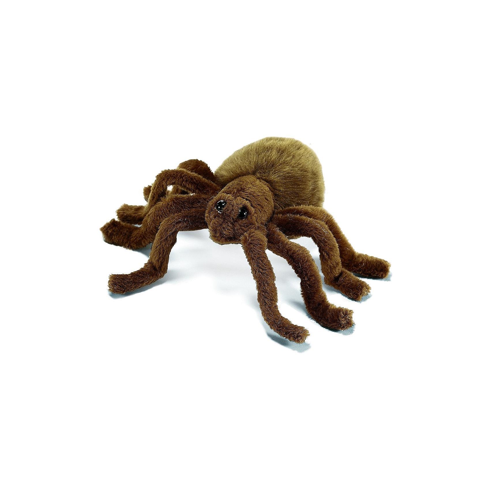 Тарантул коричневый, 19 см,  HansaМягкие игрушки животные<br>Тарантул коричневый от Hansa (Ханса) – это, украшение и игрушка для тех малышей, которые не боятся  и интересуются насекомыми. Ведь несмотря на то, что игрушка во многом повторяет оригинал, она выглядит вполне дружелюбной и безобидной. Тарантул сделан из мягкого искусственного меха, приятного на ощупь. Внутри – металлический каркас, поэтому лапки можно ставить практически в любое положение. Тарантула можно подвесить к потолку на специальную леску, которая прикреплена к спине игрушки. Игрушка сшита вручную из искусственного меха, текстиля и иных материалов высокого качества.   Модель может быть использована не только в качестве классической мягкой игрушки, но и как элемент декора в интерьере.<br><br>Дополнительная информация:<br><br>- Размер: 19 см;<br>- Материал: искусственный мех, металл;<br>- Размер упаковки: 19 х 16 х 7 см;<br>- Вес с упаковкой: 130 г.<br><br>Тарантула коричневого, 19 см,  Hansa (Ханса) можно купить в нашем интернет-магазине.<br><br>Ширина мм: 190<br>Глубина мм: 160<br>Высота мм: 70<br>Вес г: 30<br>Возраст от месяцев: 132<br>Возраст до месяцев: 240<br>Пол: Унисекс<br>Возраст: Детский<br>SKU: 3563696