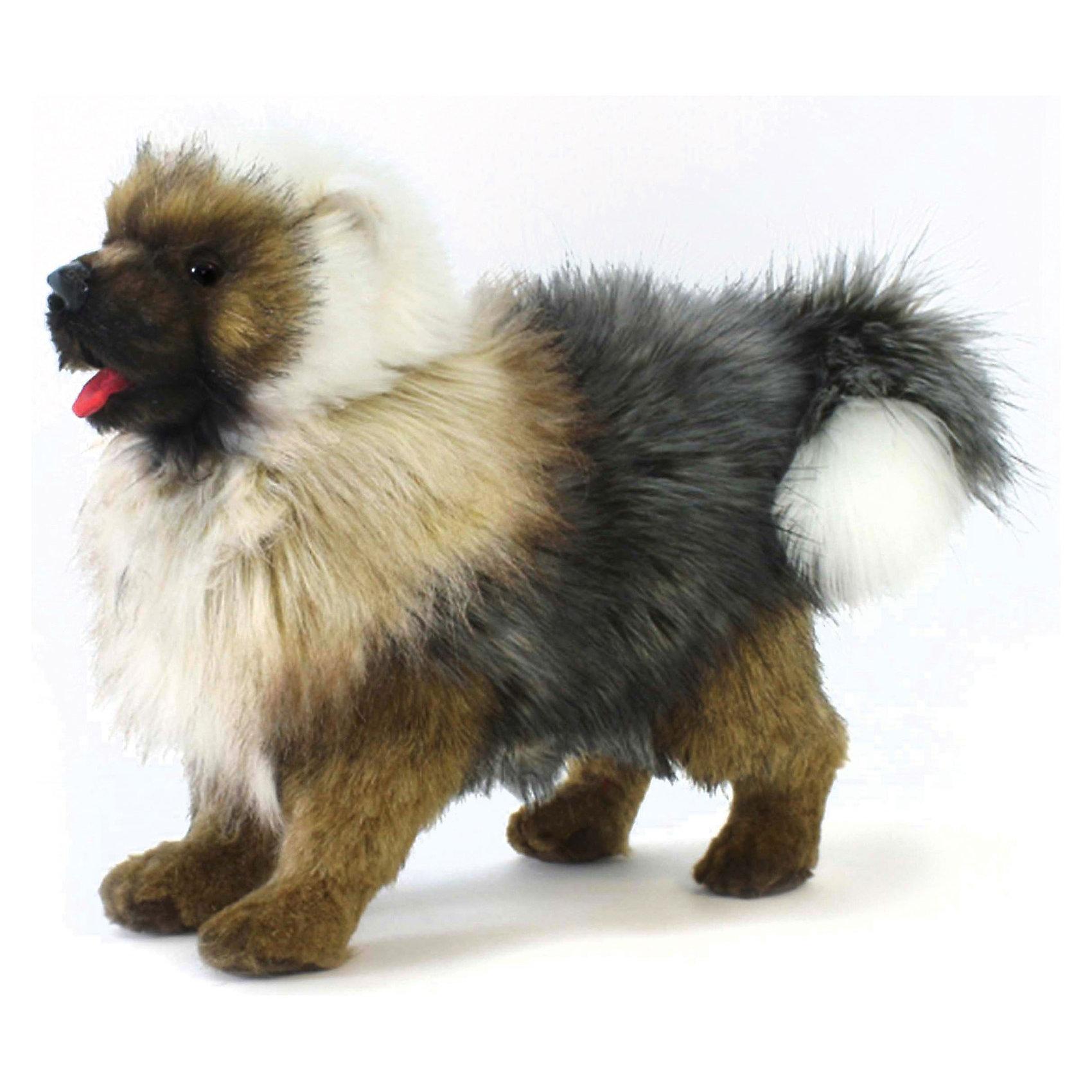 Чау-Чау щенок, 30 см ,  HansaКошки и собаки<br>У игрушечной копии настоящего щенка Чау-Чау от Hansa (Ханса)  длинная и мохнатая шерсть, которую можно причесывать щеткой, и забавный красный язычок. Основанием для поддержания конструкции игрушки служит прочный и надёжный металлический каркас, а плотная набивка выполнена из высококачественного искусственного меха, не содержащего в составе волокон аллергических веществ. Мягкая игрушка подарит массу удовольствия и активно развивает зрительное и тактильное восприятие, воображение и фантазию.  Изготавливается игрушка из искусственного меха, специально обработанного для придания схожести с мехом конкретного вида животного. <br>Весёлый и потешный песик  станет верным и преданным другом своему маленькому хозяину! <br><br>Дополнительная информация:<br><br>- Высота: 30 см;<br>- Материал: искусственный мех, металл;<br>- Размер упаковки: 30 х 15 х 26 см;<br>- Вес с упаковкой: 255 г.<br><br>Щенка Чау-Чау, 30 см,  Hansa (Ханса) можно купить в нашем интернет-магазине.<br><br>Ширина мм: 300<br>Глубина мм: 150<br>Высота мм: 260<br>Вес г: 255<br>Возраст от месяцев: 168<br>Возраст до месяцев: 276<br>Пол: Унисекс<br>Возраст: Детский<br>SKU: 3563699