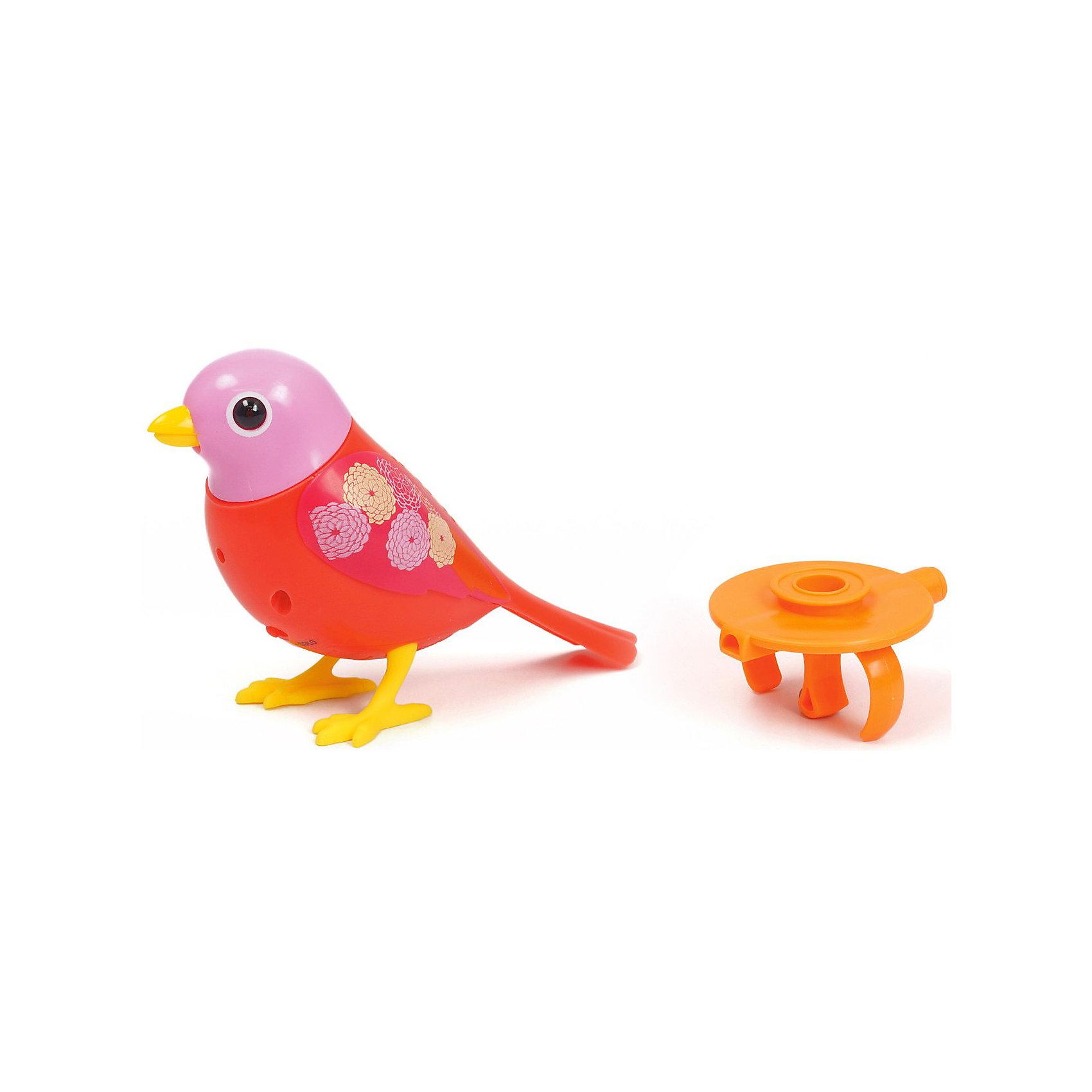 Поющая птичка с кольцом DigiBirds, в ассортименте