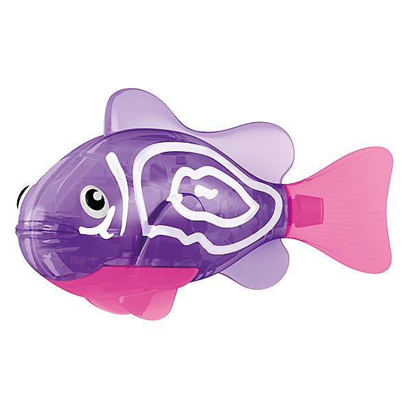 РобоРыбка Хромис, RoboFishРоборыбки<br>Тропическая РобоРыбка Хромис, ZURU (Зуру) – это высокотехнологичная инновационная игрушка, имитирующая движения и повадки рыбы в воде.<br>РобоРыбка (Robofish) тропическая Хромис яркого фиолетового цвета с характерными белыми полосками очень похожа на настоящего Хромиса. Для РобоРыбки нужна только ёмкость с водой, и никакого ухода! Автоматический датчик, активирует рыбку в воде. Мягкий силиконовый хвост и электромагнитный мотор позволит ей двигаться в 5 различных направлениях: влево, вправо, вперед, вверх или вниз. Ультразвуковая герметизация на 100% защитит внутренности от проникновения воды. РобоРыбка повторяет повадки настоящих рыб: опускается на дно и всплывает на поверхность, сбивается в стаи с другими роборыбками, трется о стенки аквариума, меняет скорость движения, оплывает преграды. Внутри рыбки в крышке под батарейками находится специальный грузик, регулирующий глубину ее погружения. Для того, чтобы рыбка перестала двигаться нужно достать её из воды и насухо вытереть. Хранить РобоРыбку можно на специальной подставке, которая есть в комплекте. Игрушка выполнена из материалов абсолютно безопасных для здоровья.<br><br>Дополнительная информация:<br><br>- Возраст: для детей от 3 лет<br>- В комплекте: 1 рыбка, подставка, 4 батарейки (две установлены в игрушку и 2 запасные)<br>- Батарейки: тип RL44(A76)<br>- Размер рыбки: 7,5 x 2,0 x 3,5 см.<br>- Материал: пластик с элементами металла и резины<br>- Вес в упаковке: 72 г.<br>- Размер упаковки: 20 x 6,5 x 5 см.<br><br>Тропическая РобоРыбка (Робофиш) Хромис, ZURU (Зуру) – заведите себе аквариум, обитатели которого порадуют и развлекут Вас своими забавными повадками и при этом совсем не потребуют никакого ухода!<br><br>Тропическую РобоРыбку Хромис, ZURU (Зуру) можно купить в нашем интернет-магазине.<br>Ширина мм: 435; Глубина мм: 240; Высота мм: 405; Вес г: 216; Возраст от месяцев: 48; Возраст до месяцев: 96; Пол: Женский; Возраст: Детский; SKU: 3609987;
