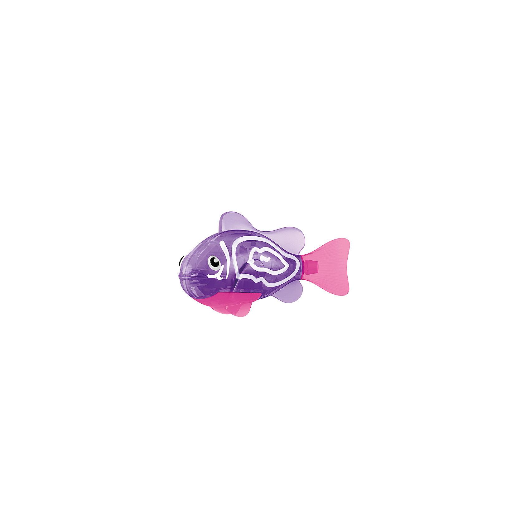 РобоРыбка Хромис, RoboFishРоборыбки<br>Тропическая РобоРыбка Хромис, ZURU (Зуру) – это высокотехнологичная инновационная игрушка, имитирующая движения и повадки рыбы в воде.<br>РобоРыбка (Robofish) тропическая Хромис яркого фиолетового цвета с характерными белыми полосками очень похожа на настоящего Хромиса. Для РобоРыбки нужна только ёмкость с водой, и никакого ухода! Автоматический датчик, активирует рыбку в воде. Мягкий силиконовый хвост и электромагнитный мотор позволит ей двигаться в 5 различных направлениях: влево, вправо, вперед, вверх или вниз. Ультразвуковая герметизация на 100% защитит внутренности от проникновения воды. РобоРыбка повторяет повадки настоящих рыб: опускается на дно и всплывает на поверхность, сбивается в стаи с другими роборыбками, трется о стенки аквариума, меняет скорость движения, оплывает преграды. Внутри рыбки в крышке под батарейками находится специальный грузик, регулирующий глубину ее погружения. Для того, чтобы рыбка перестала двигаться нужно достать её из воды и насухо вытереть. Хранить РобоРыбку можно на специальной подставке, которая есть в комплекте. Игрушка выполнена из материалов абсолютно безопасных для здоровья.<br><br>Дополнительная информация:<br><br>- Возраст: для детей от 3 лет<br>- В комплекте: 1 рыбка, подставка, 4 батарейки (две установлены в игрушку и 2 запасные)<br>- Батарейки: тип RL44(A76)<br>- Размер рыбки: 7,5 x 2,0 x 3,5 см.<br>- Материал: пластик с элементами металла и резины<br>- Вес в упаковке: 72 г.<br>- Размер упаковки: 20 x 6,5 x 5 см.<br><br>Тропическая РобоРыбка (Робофиш) Хромис, ZURU (Зуру) – заведите себе аквариум, обитатели которого порадуют и развлекут Вас своими забавными повадками и при этом совсем не потребуют никакого ухода!<br><br>Тропическую РобоРыбку Хромис, ZURU (Зуру) можно купить в нашем интернет-магазине.<br><br>Ширина мм: 435<br>Глубина мм: 240<br>Высота мм: 405<br>Вес г: 216<br>Возраст от месяцев: 48<br>Возраст до месяцев: 96<br>Пол: Женский<br>Возраст: Детский<br>SKU: 3609987