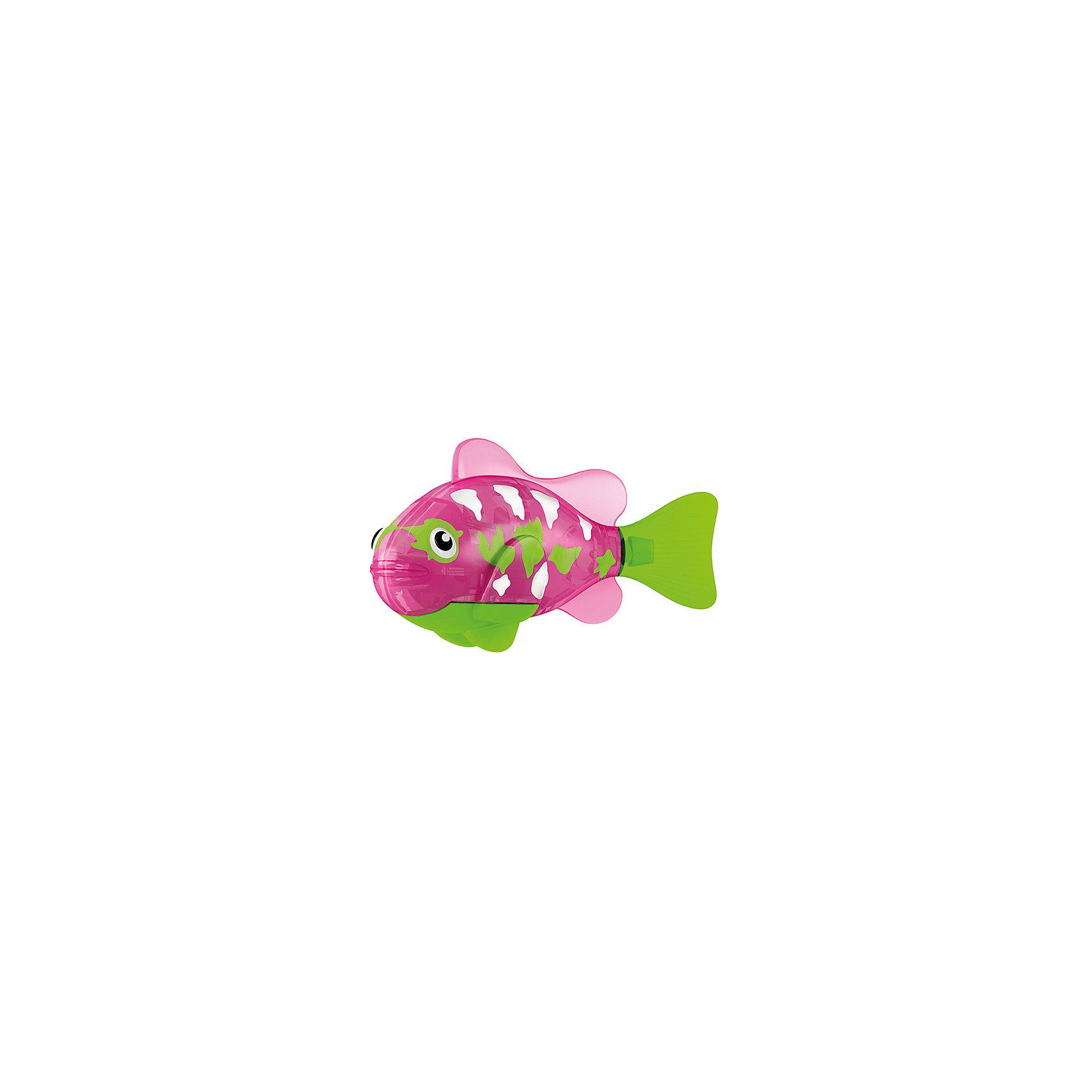 РобоРыбка Собачка, RoboFishРоборыбки<br>Тропическая РобоРыбка Собачка, ZURU (Зуру) – это высокотехнологичная инновационная игрушка, имитирующая движения и повадки рыбы в воде.<br>РобоРыбка  (Robofish) тропическая Собачка розового цвета выглядит очень красиво и напоминает свою родственницу из теплых морей. Для РобоРыбки нужна только ёмкость с водой, и никакого ухода! Автоматический датчик, активирует рыбку в воде. Мягкий силиконовый хвост и электромагнитный мотор позволит ей двигаться в 5 различных направлениях: влево, вправо, вперед, вверх или вниз. Ультразвуковая герметизация на 100% защитит внутренности от проникновения воды. РобоРыбка повторяет повадки настоящих рыб: опускается на дно и всплывает на поверхность, сбивается в стаи с другими роборыбками, трется о стенки аквариума, меняет скорость движения, оплывает преграды. Внутри рыбки в крышке под батарейками находится специальный грузик, регулирующий глубину ее погружения. Для того, чтобы рыбка перестала двигаться нужно достать её из воды и насухо вытереть. Хранить РобоРыбку можно на специальной подставке, которая есть в комплекте. Игрушка выполнена из материалов абсолютно безопасных для здоровья.<br><br>Дополнительная информация:<br><br>- Возраст: для детей от 3 лет<br>- В комплекте: 1 рыбка, подставка, 4 батарейки (две установлены в игрушку и 2 запасные)<br>- Батарейки: тип RL44 (A76)<br>- Размер рыбки: 7,5 x 2,0 x 3,5 см.<br>- Материал: пластик с элементами металла и резины<br>- Вес в упаковке: 72 г.<br>- Размер упаковки: 20 x 6,5 x 5 см.<br><br>Тропическая РобоРыбка (Робофиш) Собачка, ZURU (Зуру) - заведите себе аквариум, обитатели которого порадуют и развлекут Вас своими забавными повадками и при этом совсем не потребуют никакого ухода!<br><br>Тропическую РобоРыбку Собачка, ZURU (Зуру) можно купить в нашем интернет-магазине.<br><br>Ширина мм: 435<br>Глубина мм: 240<br>Высота мм: 405<br>Вес г: 216<br>Возраст от месяцев: 48<br>Возраст до месяцев: 96<br>Пол: Женский<br>Возраст: Детский<br>SKU: 3609988