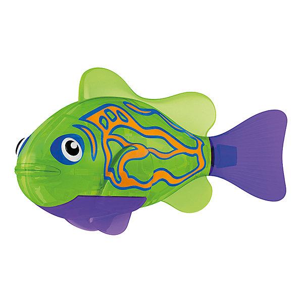 РобоРыбка Мандаринка, RoboFishРоборыбки<br>Тропическая РобоРыбка Мандаринка, ZURU (Зуру) – это высокотехнологичная инновационная игрушка, имитирующая движения и повадки рыбы в воде.<br>Тропическая РобоРыбка (Robofish) Мандаринка зеленого цвета с фиолетовыми плавниками и грациозными полосками выглядит очень красиво и напоминает свою родственницу из теплых морей. Для РобоРыбки нужна только ёмкость с водой, и никакого ухода! Автоматический датчик, активирует рыбку в воде. Мягкий силиконовый хвост и электромагнитный мотор позволит ей двигаться в 5 различных направлениях: влево, вправо, вперед, вверх или вниз. Ультразвуковая герметизация на 100% защитит внутренности от проникновения воды. РобоРыбка повторяет повадки настоящих рыб: опускается на дно и всплывает на поверхность, сбивается в стаи с другими роборыбками, трется о стенки аквариума, меняет скорость движения, оплывает преграды. Внутри рыбки в крышке под батарейками находится специальный грузик, регулирующий глубину ее погружения. Для того, чтобы рыбка перестала двигаться нужно достать её из воды и насухо вытереть. Хранить РобоРыбку можно на специальной подставке, которая есть в комплекте. Игрушка выполнена из материалов абсолютно безопасных для здоровья.<br><br>Дополнительная информация:<br><br>- Возраст: для детей от 3 лет<br>- В комплекте: 1 рыбка, подставка, 4 батарейки (две установлены в игрушку и 2 запасные)<br>- Батарейки: тип RL44(A76)<br>- Размер рыбки: 7,5 x 2,0 x 3,5 см.<br>- Материал: пластик с элементами металла и резины<br>- Вес в упаковке: 72 г.<br>- Размер упаковки: 20 x 6,5 x 5 см.<br><br>Тропическая РобоРыбка ( Робофиш) Мандаринка, ZURU (Зуру) - заведите себе аквариум, обитатели которого порадуют и развлекут Вас своими забавными повадками и при этом совсем не потребуют никакого ухода!<br><br>Тропическую РобоРыбку Мандаринка, ZURU (Зуру) можно купить в нашем интернет-магазине.<br><br>Ширина мм: 435<br>Глубина мм: 240<br>Высота мм: 405<br>Вес г: 216<br>Возраст от месяцев: 48<br>Возраст до месяцев: 