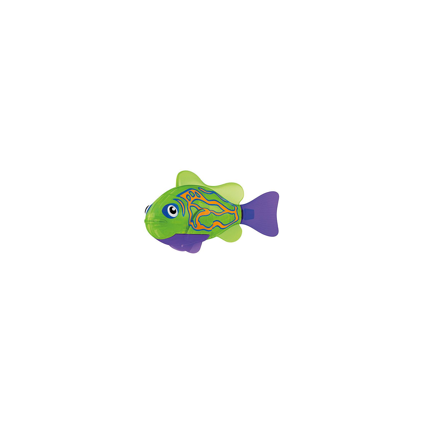 РобоРыбка Мандаринка, RoboFishРоборыбки и русалки<br>Тропическая РобоРыбка Мандаринка, ZURU (Зуру) – это высокотехнологичная инновационная игрушка, имитирующая движения и повадки рыбы в воде.<br>Тропическая РобоРыбка (Robofish) Мандаринка зеленого цвета с фиолетовыми плавниками и грациозными полосками выглядит очень красиво и напоминает свою родственницу из теплых морей. Для РобоРыбки нужна только ёмкость с водой, и никакого ухода! Автоматический датчик, активирует рыбку в воде. Мягкий силиконовый хвост и электромагнитный мотор позволит ей двигаться в 5 различных направлениях: влево, вправо, вперед, вверх или вниз. Ультразвуковая герметизация на 100% защитит внутренности от проникновения воды. РобоРыбка повторяет повадки настоящих рыб: опускается на дно и всплывает на поверхность, сбивается в стаи с другими роборыбками, трется о стенки аквариума, меняет скорость движения, оплывает преграды. Внутри рыбки в крышке под батарейками находится специальный грузик, регулирующий глубину ее погружения. Для того, чтобы рыбка перестала двигаться нужно достать её из воды и насухо вытереть. Хранить РобоРыбку можно на специальной подставке, которая есть в комплекте. Игрушка выполнена из материалов абсолютно безопасных для здоровья.<br><br>Дополнительная информация:<br><br>- Возраст: для детей от 3 лет<br>- В комплекте: 1 рыбка, подставка, 4 батарейки (две установлены в игрушку и 2 запасные)<br>- Батарейки: тип RL44(A76)<br>- Размер рыбки: 7,5 x 2,0 x 3,5 см.<br>- Материал: пластик с элементами металла и резины<br>- Вес в упаковке: 72 г.<br>- Размер упаковки: 20 x 6,5 x 5 см.<br><br>Тропическая РобоРыбка ( Робофиш) Мандаринка, ZURU (Зуру) - заведите себе аквариум, обитатели которого порадуют и развлекут Вас своими забавными повадками и при этом совсем не потребуют никакого ухода!<br><br>Тропическую РобоРыбку Мандаринка, ZURU (Зуру) можно купить в нашем интернет-магазине.<br><br>Ширина мм: 435<br>Глубина мм: 240<br>Высота мм: 405<br>Вес г: 216<br>Возраст от месяцев: 48<br>Возраст до