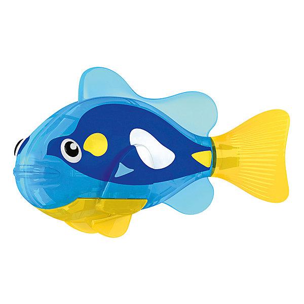 РобоРыбка  Ангел, RoboFishРоборыбки<br>Тропическая РобоРыбка Ангел, ZURU (Зуру) – это высокотехнологичная инновационная игрушка, имитирующая движения и повадки рыбы в воде.<br>Тропическая РобоРыбка (Robofish) Ангел выглядит очень красиво и напоминает свою родственницу из теплых морей. Для РобоРыбки нужна только ёмкость с водой, и никакого ухода! Автоматический датчик, активирует рыбку в воде. Мягкий силиконовый хвост и электромагнитный мотор позволит ей двигаться в 5 различных направлениях: влево, вправо, вперед, вверх или вниз. Ультразвуковая герметизация на 100% защитит внутренности от проникновения воды. РобоРыбка повторяет повадки настоящих рыб: опускается на дно и всплывает на поверхность, сбивается в стаи с другими роборыбками, трется о стенки аквариума, меняет скорость движения, оплывает преграды. Внутри рыбки в крышке под батарейками находится специальный грузик, регулирующий глубину ее погружения. Для того, чтобы рыбка перестала двигаться нужно достать её из воды и насухо вытереть. Хранить РобоРыбку можно на специальной подставке, которая есть в комплекте. Игрушка выполнена из материалов абсолютно безопасных для здоровья.<br><br>Дополнительная информация:<br><br>- Возраст: для детей от 3 лет<br>- В комплекте: 1 рыбка, подставка, 4 батарейки (две установлены в игрушку и 2 запасные)<br>- Батарейки: тип RL44(A76)<br>- Размер рыбки: 7,5 x 2,0 x 3,5 см.<br>- Материал: пластик с элементами металла и резины<br>- Вес в упаковке: 72 г.<br>- Размер упаковки: 20 x 6,5 x 5 см.<br><br>Тропическая РобоРыбка (Робофиш) Ангел, ZURU (Зуру) - заведите себе аквариум, обитатели которого порадуют и развлекут Вас своими забавными повадками и при этом совсем не потребуют никакого ухода!<br><br>Тропическую РобоРыбку Ангел, ZURU (Зуру) можно купить в нашем интернет-магазине.<br>Ширина мм: 435; Глубина мм: 240; Высота мм: 405; Вес г: 216; Возраст от месяцев: 48; Возраст до месяцев: 96; Пол: Мужской; Возраст: Детский; SKU: 3609992;