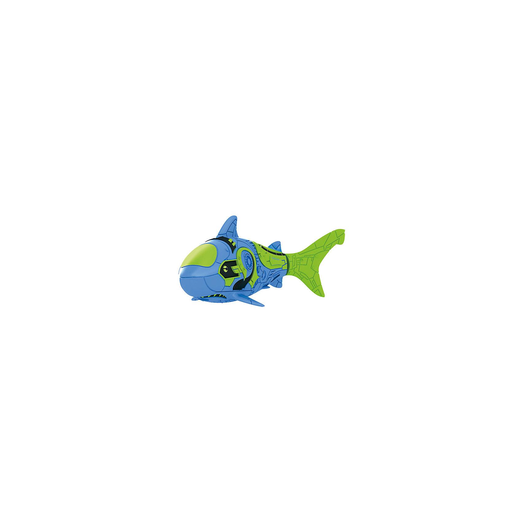 РобоРыбка Акула синяя, RoboFishРоборыбки и русалки<br>Тропическая РобоРыбка Акула, ZURU (Зуру) – это высокотехнологичная инновационная игрушка, имитирующая движения и повадки рыбы в воде.<br>Тропическая РобоРыбка (Robofish) Акула выглядит как настоящая и двигается словно живая! Для РобоРыбки нужна только ёмкость с водой, и никакого ухода! Автоматический датчик, активирует рыбку в воде. Мягкий силиконовый хвост и электромагнитный мотор позволит ей двигаться в 5 различных направлениях: влево, вправо, вперед, вверх или вниз. Ультразвуковая герметизация на 100% защитит внутренности от проникновения воды. РобоРыбка повторяет повадки настоящих рыб: опускается на дно и всплывает на поверхность, сбивается в стаи с другими роборыбками, трется о стенки аквариума, меняет скорость движения, оплывает преграды. Внутри рыбки в крышке под батарейками находится специальный грузик, регулирующий глубину ее погружения. Для того, чтобы рыбка перестала двигаться нужно достать её из воды и насухо вытереть. Хранить РобоРыбку можно на специальной подставке, которая есть в комплекте. Игрушка выполнена из материалов абсолютно безопасных для здоровья.<br><br>Дополнительная информация:<br><br>- Возраст: для детей от 3 лет<br>- В комплекте: 1 рыбка, подставка, 4 батарейки (две установлены в игрушку и 2 запасные)<br>- Батарейки: тип RL44(A76)<br>- Размер рыбки: 7,5 x 2,0 x 3,5 см.<br>- Материал: пластик с элементами металла и резины<br>- Вес в упаковке: 72 г.<br>- Размер упаковки: 20 x 6,5 x 5 см.<br><br>Тропическая РобоРыбка (Робофиш) Акула, ZURU (Зуру) - заведите себе аквариум, обитатели которого порадуют и развлекут Вас своими забавными повадками и при этом совсем не потребуют никакого ухода!<br><br>Тропическую РобоРыбку Акула, ZURU (Зуру) можно купить в нашем интернет-магазине.<br><br>Ширина мм: 435<br>Глубина мм: 240<br>Высота мм: 405<br>Вес г: 218<br>Возраст от месяцев: 48<br>Возраст до месяцев: 96<br>Пол: Мужской<br>Возраст: Детский<br>SKU: 3609994
