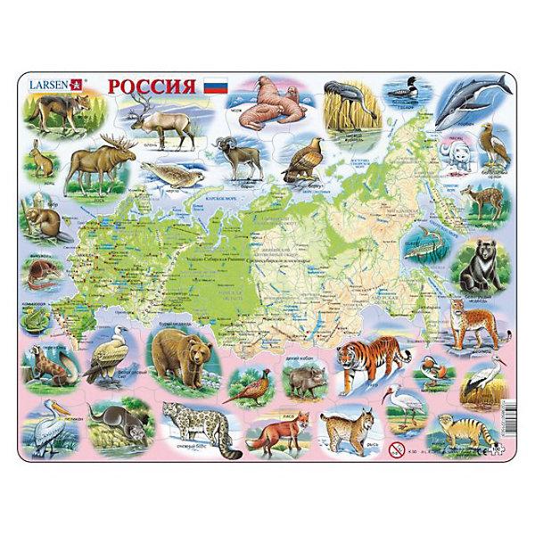 Пазл Россия,  Larsen, 100 деталейПазлы классические<br>Пазл «Россия», Larsen (Ларсен), 100 деталей – познакомит ребенка глубже с географией и зоологией нашей страны.<br><br>Пазл «Россия» - это карта с названиями городов, рек, озер, гор и т.п. Вокруг карты изображены животные, которые обитают на территории России. Пазл выполнен из высококачественного трехслойного картона, снабжен специальной подложкой, благодаря которой пазл легко собирать. Различные размеры и формы элементов способствуют развитию мелкой моторики ребенка.<br><br>Дополнительная информация:<br><br>- количество деталей: 100 шт.<br>- размер: 36,5х28,5 см<br>- вес: 300 г<br>- материал: плотный картон<br><br>Пазл «Россия», Larsen (Ларсен), 100 деталей - прекрасный выбор заботливых родителей, с которым ребенок проведет время интересно и с пользой.<br><br>Пазл «Россия», Larsen (Ларсен), 107 деталей можно купить в нашем магазине.<br>Ширина мм: 360; Глубина мм: 360; Высота мм: 280; Вес г: 100; Возраст от месяцев: 72; Возраст до месяцев: 120; Пол: Унисекс; Возраст: Детский; Количество деталей: 100; SKU: 3610570;