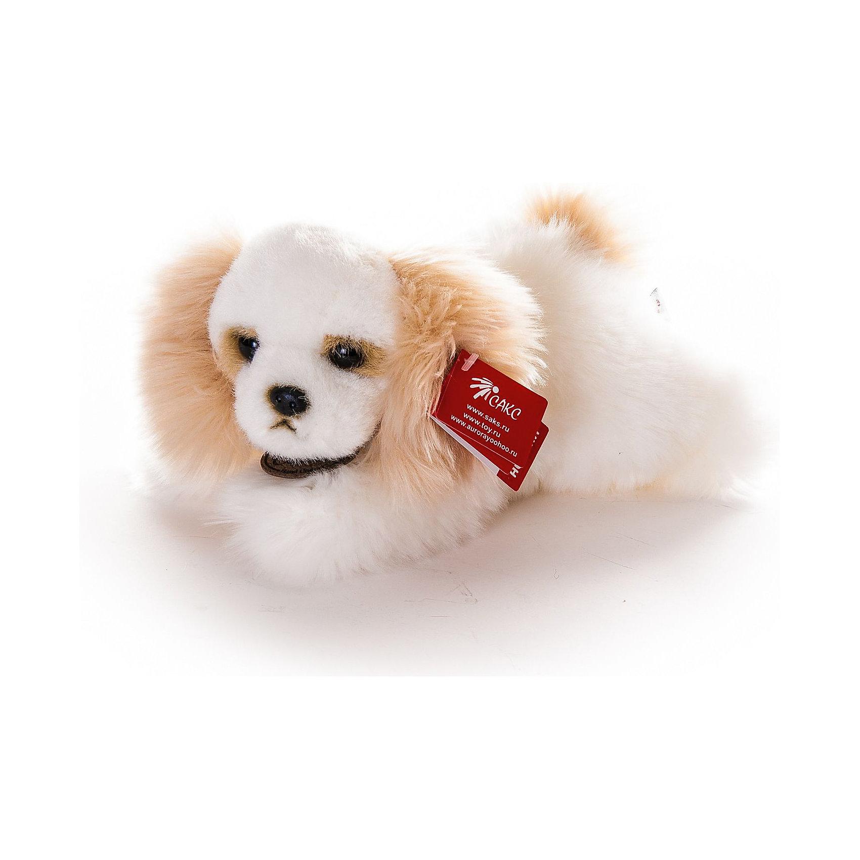 Кокер-спаниель классический, 25 см, AURORAКошки и собаки<br>Кокер-спаниель классический, 25 см, AURORA (Аврора) станет малышу настоящим другом, с которым можно весело играть днем и уютно засыпать ночью. Игрушечный песик составит приятную компанию малышу на прогулке. Шерстка щенка мягкая и шелковистая, поэтому ребенку будет очень приятно держать игрушку в руках. Игрушка очень приятная на ощупь, содержат специальные пластмассовые гранулы, развивающие тактильные навыки у детей младшего возраста.<br>Игрушка изготовлена из высококачественного плюша, набивка - гипоаллергенный синтепон. Яркие и стойкие цвета приятны для глаз. Не стоит расстраиваться, если малыш ненароком испачкал своего плюшевого друга, ведь игрушку можно стирать при температуре не выше 30?, разрешена машинная и ручная стирка. Производители заботятся о безопасности вашего малыша, поэтому пластмассовые глаза надежно прикреплены к мордочке щенка. С этой игрушкой ребенок может разыгрывать любые сюжеты, благодаря чему у него будет развиваться фантазия, воображение, а также навыки сюжетно-ролевой игры.<br><br>Дополнительная информация:<br><br>- Материалы: плюш, синтепон<br>- Размер игрушки: 25 см.<br><br>Кокер-спаниеля классического, 25 см, AURORA (Аврора) можно купить в нашем интернет-магазине.<br><br>Ширина мм: 240<br>Глубина мм: 120<br>Высота мм: 120<br>Вес г: 210<br>Возраст от месяцев: 36<br>Возраст до месяцев: 120<br>Пол: Унисекс<br>Возраст: Детский<br>SKU: 3624952