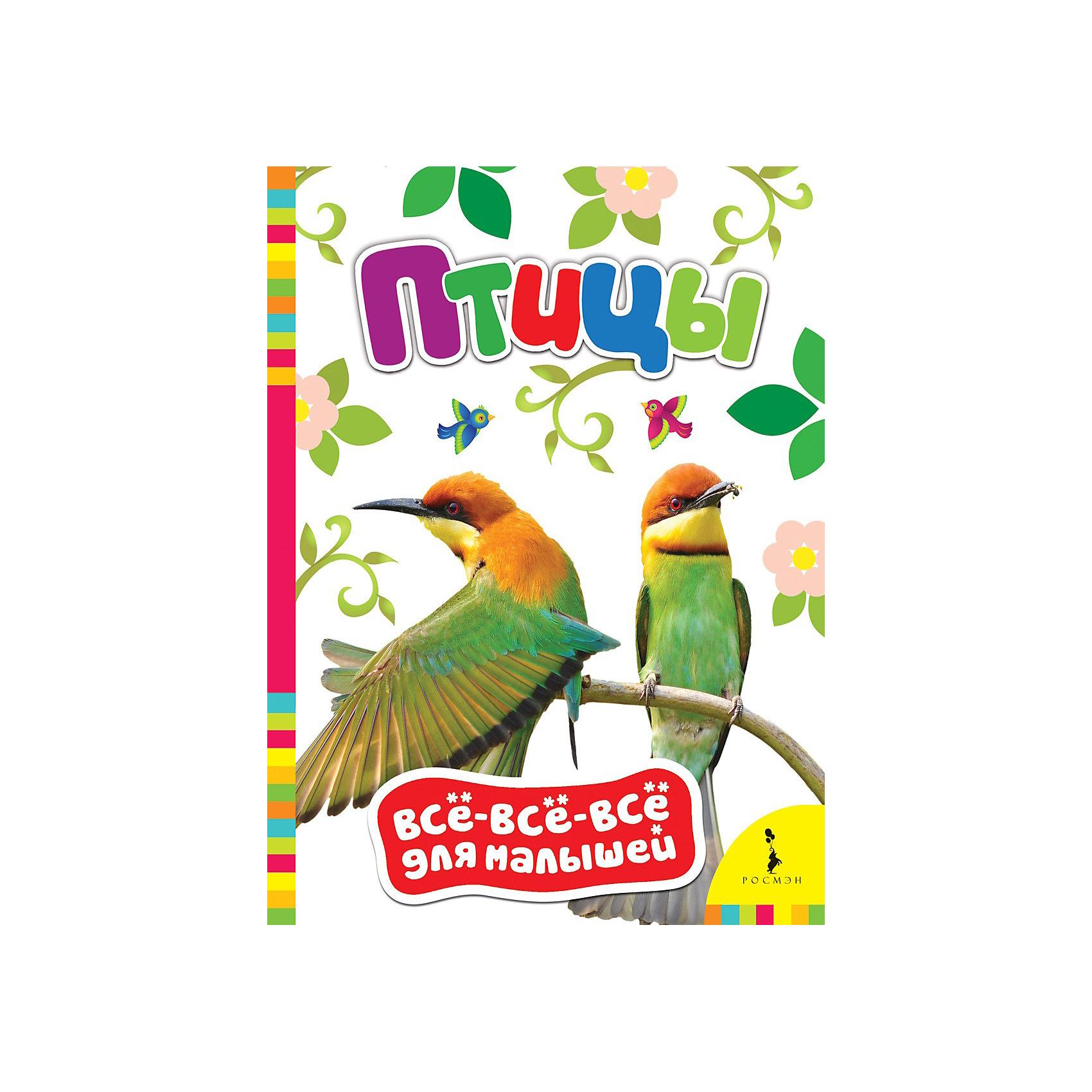 Росмэн Птицы, Всё-всё-всё для малышей росмэн птицы всё всё всё для малышей