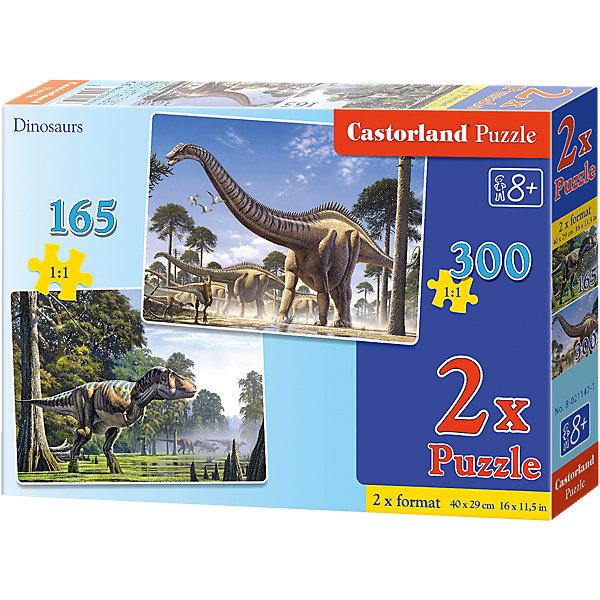 Набор пазлов Динозавры, 165*240 деталей, CastorlandПазлы для малышей<br>Дети обожают динозавров! Они поражают воображение детишек своими размерами и мощью, а с набором пазлов Динозавры Castorland (Касторленд) дети смогут своими руками собрать изображение любимых животных! Такое занятие не оставит  равнодушным  Вашего ребенка! Сборка красочных пазлов Динозавры Castorland (Касторленд) подарит Вашим детям не только несколько вечеров творчества, но и принесет пользу для развития. Подбор деталей друг к другу способствует развитию образного и логического мышления, наблюдательности, мелкой моторики и координации движений руки. Красочный пазл с интересным сюжетом и цветовыми градациями состоит из глянцевых, приятных на ощупь деталей с ровными краями и идеальной проклейкой. Точная нарезка гарантирует легкость стыковки и многократность сборки без потери внешнего вида!<br><br>Дополнительная информация:<br><br>- В наборе 2 картинки: 165 и 240 деталей;<br>- Прекрасный подарок для любителя динозавров;<br>- Детали не будут расслаиваться, что обеспечит долгий срок службы;<br>- Детали идеально подходят друг другу;<br>- Яркие картинки;<br>- Материал: картон;<br>- Размер собранной картинки: 32 х 23 см;<br>- Вес: 246 г<br><br>Набор пазлов Динозавры, 165, 240 деталей, Castorland (Касторленд) можно купить в нашем интернет-магазине.<br>Ширина мм: 332; Глубина мм: 233; Высота мм: 55; Вес г: 575; Возраст от месяцев: 96; Возраст до месяцев: 120; Пол: Мужской; Возраст: Детский; Количество деталей: 165; SKU: 3717130;
