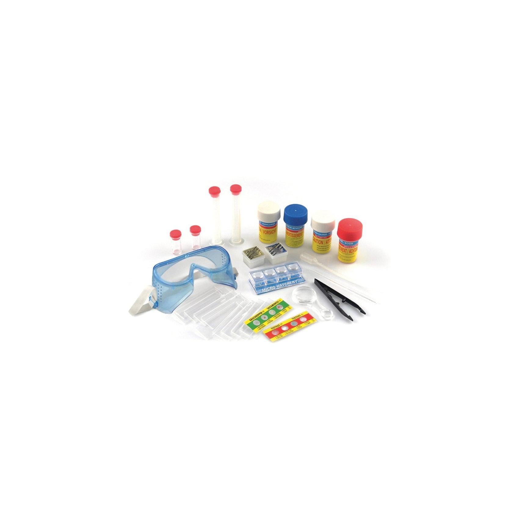 Набор для микроскопа SM063, EDU-TOYSМикроскопы<br>Этот набор для микроскопа приведет в восторг всех юных исследователей. В наборе есть все, чтобы проводить настоящие эксперименты и микробиологические исследования. С этим набором ваш ребенок каждый день будет совершать новый открытия и получать море положительных эмоций и удовольствия. <br><br>Дополнительная информация:<br><br>В комплекте: <br>- защитные очки, <br>- увеличительное стекло (х3, х6), <br>- 12 прозрачных пластинок, <br>- 12 стикеров, <br>- пинцет, <br>- пипетка, <br>- 2 большие пробирки с делением, <br>- 2 маленькие пробирки, <br>- палочка для помешивания, <br>- контейнеры с увеличением, <br>- набор стекол 10 шт, <br>- 2 стекла с препаратами для микроскопа, <br>- 4 баночки с веществами (икра креветки, краситель, синька, хлорка),<br>- инструкция.<br><br>Набор для микроскопа SM063, EDU-TOYS можно купить в нашем магазине.<br><br>Ширина мм: 242<br>Глубина мм: 240<br>Высота мм: 66<br>Вес г: 354<br>Возраст от месяцев: 120<br>Возраст до месяцев: 192<br>Пол: Унисекс<br>Возраст: Детский<br>SKU: 3726028