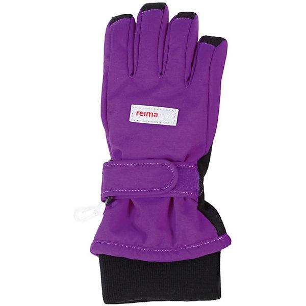 Перчатки для девочки Reimatec® ReimaПерчатки, варежки<br>Перчатки от популярной финской марки Reima.<br>*Детские зимние перчатки Reimatec<br>*Водонепроницаемая вставка Hipora<br>*Теплая 100% Флисовая подкладка и 170 г утеплителя<br>*Дополнительные усилительные вставки на ладони, большом пальце и верхушке перчатки<br>*Быстро сохнут<br>Состав:<br>100% Полиамид, Полиуретан-покрытие<br><br>Перчатки для девочки Reimatec® Reima (Рейма) можно купить в нашем магазине.<br>Ширина мм: 162; Глубина мм: 171; Высота мм: 55; Вес г: 119; Цвет: лиловый; Возраст от месяцев: 96; Возраст до месяцев: 120; Пол: Женский; Возраст: Детский; Размер: 3,6,4,7,8,5; SKU: 3748381;