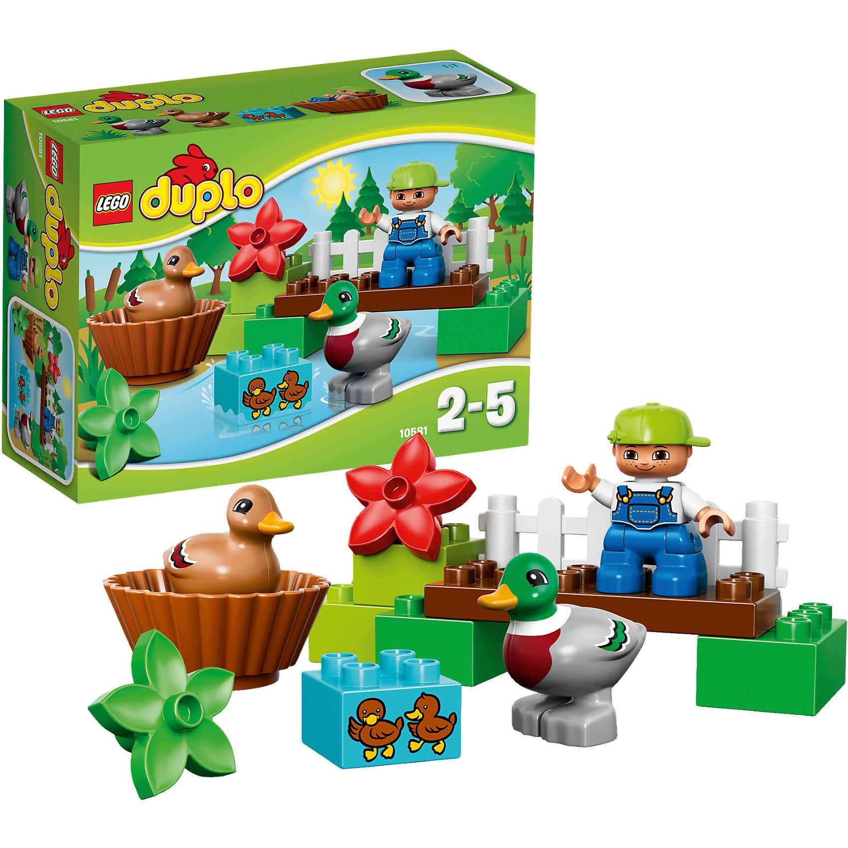 LEGO DUPLO 10581: Уточки в лесуЗамечательная новинка от LEGO DUPLO (ЛЕГО Дупло) 10581: Уточки в лесу! Представьте прекрасное озеро на котором поселилась замечательная утиная семья. Покажите малышу, как построить на полянке мостик по которому уточки смогут ходить на прогулку. Украсьте полянку цветочками. Малышам особенно понравится строить гнездо для утят. Они совсем маленькие и еще не могут гулять одни. Строя пирамидки, мостики и просто соединяя детали между собой ребёнок в увлекательной игровой форме тренирует мелкую моторику и координацию. Создайте милые и увлекательные сюжеты с набором LEGO DUPLO (ЛЕГО Дупло) 10581: Уточки в лесу!  <br><br>Конструкторы LEGO DUPLO (ЛЕГО ДУПЛО) созданы специально для детей дошкольного возраста. Они сочетают увлекательную игру и обучение, а также развивают мелкую моторику, пространственное мышление и творческие способности малышей. Кубики LEGO DUPLO (ЛЕГО ДУПЛО) в 8 раз больше, чем обычные, что позволяет ребенку удобно держать их ручками и быстро строить. Большое количество дополнительных элементов делает игровые сюжеты по-настоящему захватывающими и реалистичными. Все наборы LEGO DUPLO (ЛЕГО ДУПЛО) соответствуют самым высоким европейским стандартам качества и абсолютно безопасны. <br><br>Дополнительная информация:<br><br>- Конструкторы LEGO (ЛЕГО) отлично развивают моторику, мышление и фантазию Вашего ребенка;<br>- В комплекте: минифигурка мальчика, деревянный мостик, белая изгородь, цветы, гнездо, кирпичик с изображением двух утят, мама-уточка и папа-селезень;<br>- Количество деталей: 13 шт;<br>- Идеальный первый конструктор;<br>- Серия: LEGO DUPLO (ЛЕГО Дупло);<br>- Материал: безопасный пластик;<br>- Размер упаковки: 19 x 14 x 7 см;<br>-Вес: 300 г<br><br>Конструктор LEGO DUPLO (ЛЕГО Дупло) 10581: Уточки в лесу можно купить в нашем магазине.<br><br>Ширина мм: 199<br>Глубина мм: 144<br>Высота мм: 73<br>Вес г: 168<br>Возраст от месяцев: 24<br>Возраст до месяцев: 60<br>Пол: Унисекс<br>Возраст: Детский<br>SKU: 3786183