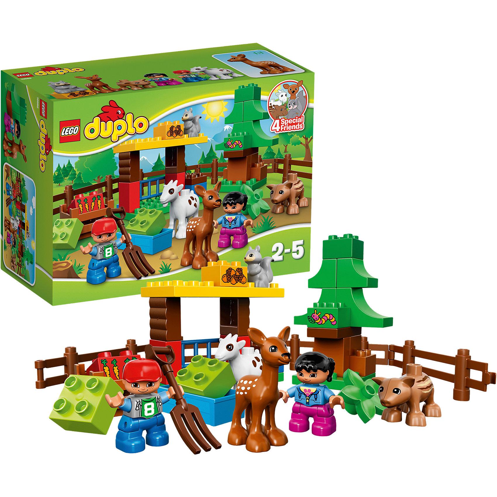 LEGO DUPLO 10582: Лесные животныеЗамечательная новинка от LEGO DUPLO (ЛЕГО Дупло) 10582: Лесные животные! Познакомить малыша с дикой природой теперь так просто. С помощью деталей набора кроха сможет построить замечательный просторный вольер с навесом и калиткой. В нем дружно живут белочка, косуля, козочка и многие другие животные. Благодаря минифигуркам мальчика и девочки малыш сможет разыграть множество интересных ситуаций. Кроха сможет поближе познакомиться с лесными животными и поймет, что они совсем не страшные. Их можно кормить и играть с ними. Играя с конструктором Лесные животные, малыш узнает кто из зверей чем питается и какие у него повадки. Яркий и очень привлекательный конструктор LEGO DUPLO (ЛЕГО Дупло) надолго привлечет внимание малыша и подарит много положительных эмоций!<br><br>Конструкторы LEGO DUPLO (ЛЕГО ДУПЛО) созданы специально для детей дошкольного возраста. Они сочетают увлекательную игру и обучение, а также развивают мелкую моторику, пространственное мышление и творческие способности малышей. Кубики LEGO DUPLO (ЛЕГО ДУПЛО) в 8 раз больше, чем обычные, что позволяет ребенку удобно держать их ручками и быстро строить. Большое количество дополнительных элементов делает игровые сюжеты по-настоящему захватывающими и реалистичными. Все наборы LEGO DUPLO (ЛЕГО ДУПЛО) соответствуют самым высоким европейским стандартам качества и абсолютно безопасны. <br><br>Дополнительная информация:<br><br>- Конструкторы LEGO (ЛЕГО) отлично развивают моторику, мышление и фантазию Вашего ребенка;<br>- В комплекте: 2 минифигурки мальчика и девочки, белочка, косуля, козочка и кабан, деревянный ящик, голубая кормушка, вилы, сено, цветы, детали набора;<br>- Количество деталей: 39 шт;<br>- Идеальный первый конструктор;<br>- Серия: LEGO DUPLO (ЛЕГО Дупло);<br>- Материал: безопасный пластик;<br>- Размер упаковки: 26 x 19 x 12 см;<br>- Вес: 600 г<br><br>Конструктор LEGO DUPLO (ЛЕГО Дупло) 10582: Лесные животные можно купить в нашем магазине.<br><br>Ширина мм: 265<br>Глубина м