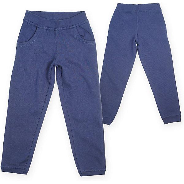 Брюки для мальчика BLUE SEVENБрюки<br>Брюки для мальчика Blue Seven. Состав: 100% хлопок<br>Ширина мм: 215; Глубина мм: 88; Высота мм: 191; Вес г: 336; Цвет: синий; Возраст от месяцев: 60; Возраст до месяцев: 72; Пол: Мужской; Возраст: Детский; Размер: 116; SKU: 3820658;