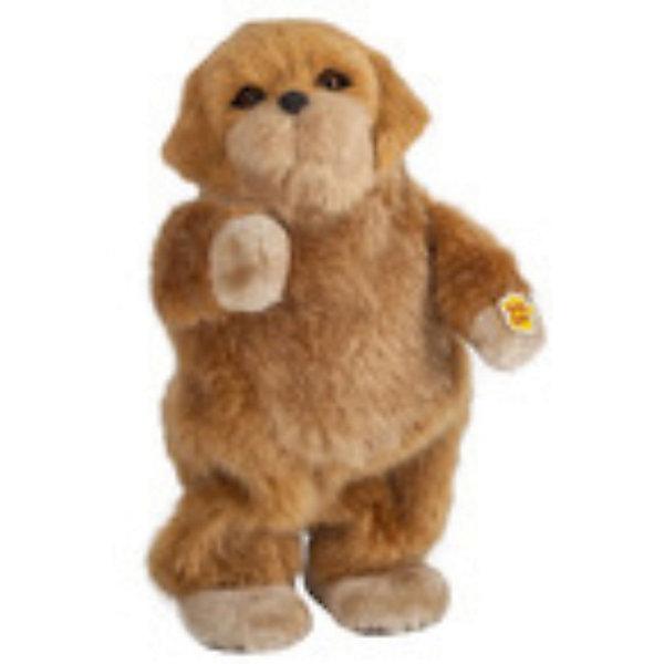 Музыкальная игрушка Рыжая собака Сэнди, Party AnimalsМягкие игрушки животные<br>Рыжая собака Сэнди, Party Animals - эта чудесная мягкая игрушка поднимает настроение своему владельцу. Забавной танцующей собачке будут рады дети любого возраста и даже взрослые. Очаровательный пушистый питомец обладает неповторимым характером, любит танцевать и веселиться, его фирменные танцевальные движения приведут Вас в восторг и заставят улыбаться. <br><br>Для того чтобы Сэнди начала танцевать и воспроизводить музыку Вам понадобятся ноутбук, mp3 плеер или любое другое устройство с аудиовходом. У музыкальной собачки 2 режима: танец, когда Сэнди начинает танцевать и останавливается только тогда, когда музыка утихает и голос - режим воспроизведения музыки. В комплект также входят встроенный динамик, аудиокабель и разъем. Игрушка выполнена из мягкого плюшевого материала. <br><br>Дополнительная информация:<br><br>- Материал: плюш, пластик.<br>- Требуются батарейки: 3 х АА (в комплект не входят).<br>- Размер упаковки: 12 х 27 х 7 см.<br>- Вес: 0,33 кг.<br><br>Музыкальную игрушку Рыжая собака Сэнди, Party Animals можно купить в нашем интернет-магазине.<br><br>Ширина мм: 120<br>Глубина мм: 270<br>Высота мм: 70<br>Вес г: 330<br>Возраст от месяцев: 72<br>Возраст до месяцев: 1188<br>Пол: Унисекс<br>Возраст: Детский<br>SKU: 3841366