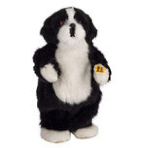 Музыкальная игрушка Черная собака Спайк, Party AnimalsМузыкальные мягкие игрушки<br>Черная собака Спайк, Party Animals - эта чудесная мягкая игрушка поднимает настроение своему владельцу. Забавному танцующему песику будут рады дети любого возраста и даже взрослые. Очаровательный пушистый питомец обладает неповторимым характером, любит танцевать и веселиться, его фирменные танцевальные движения приведут Вас в восторг и заставят улыбаться. <br><br>Для того чтобы Спайк начала танцевать и воспроизводить музыку Вам понадобятся ноутбук, mp3 плеер или любое другое устройство с аудиовходом. У музыкальной собачки 2 режима: танец, когда Спайк начинает танцевать и останавливается только тогда, когда музыка утихает и голос - режим воспроизведения музыки. В комплект также входят встроенный динамик, аудиокабель и разъем. Игрушка выполнена из мягкого плюшевого материала. <br><br>Дополнительная информация:<br><br>- Материал: плюш, пластик.<br>- Требуются батарейки: 3 х АА (в комплект не входят).<br>- Размер упаковки: 12 х 27 х 7 см.<br>- Вес: 0,33 кг.<br><br>Музыкальную игрушку Черная собака Спайк, Party Animals можно купить в нашем интернет-магазине.<br><br>Ширина мм: 120<br>Глубина мм: 270<br>Высота мм: 70<br>Вес г: 330<br>Возраст от месяцев: 72<br>Возраст до месяцев: 1188<br>Пол: Унисекс<br>Возраст: Детский<br>SKU: 3841367