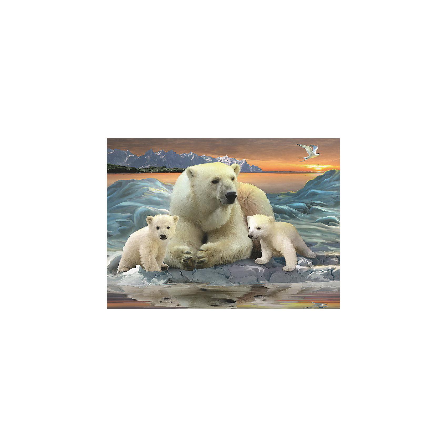 Пазл «Полярные медведи» XXL 200 деталей, RavensburgerПазл «Полярные медведи» XXL 200 деталей, Ravensburger (Равенсбургер) – это великолепный подарок, как для ребенка, так и для взрослого.<br>Пазл Ravensburger Полярные медведи, без сомнения, придется по душе вашему ребенку. Собрав этот пазл, он получит великолепную картину с изображением белых медведей. Собирая картинку, ребенок развивает логическое мышление, воображение, мелкую моторику и умение принимать самостоятельные решения. Пазлы Ravensburger неповторимы и уникальны тем, что для их изготовления используется картон наивысшего класса, благодаря которому сложенные головоломки не сгибаются, сам картон не отделяется от картинки, а сложенная картинка представляется абсолютно плоской и не деформируется даже спустя время. Прочные детали не ломаются. Каждая деталь имеет свою форму и подходит только на своё место. Матовая поверхность исключает неприятные отблески. Изготовлено из экологического сырья.<br><br>Дополнительная информация:<br><br>- Количество деталей: 200<br>- Размер картинки: 36х49 см.<br>- Материал: прочный картон<br>- Размер коробки: 34 x 4 x 23 см.<br><br>Пазл «Полярные медведи» XXL 200 деталей, Ravensburger (Равенсбургер) можно купить в нашем интернет-магазине.<br><br>Ширина мм: 340<br>Глубина мм: 40<br>Высота мм: 230<br>Вес г: 571<br>Возраст от месяцев: 96<br>Возраст до месяцев: 168<br>Пол: Унисекс<br>Возраст: Детский<br>Количество деталей: 200<br>SKU: 3894981