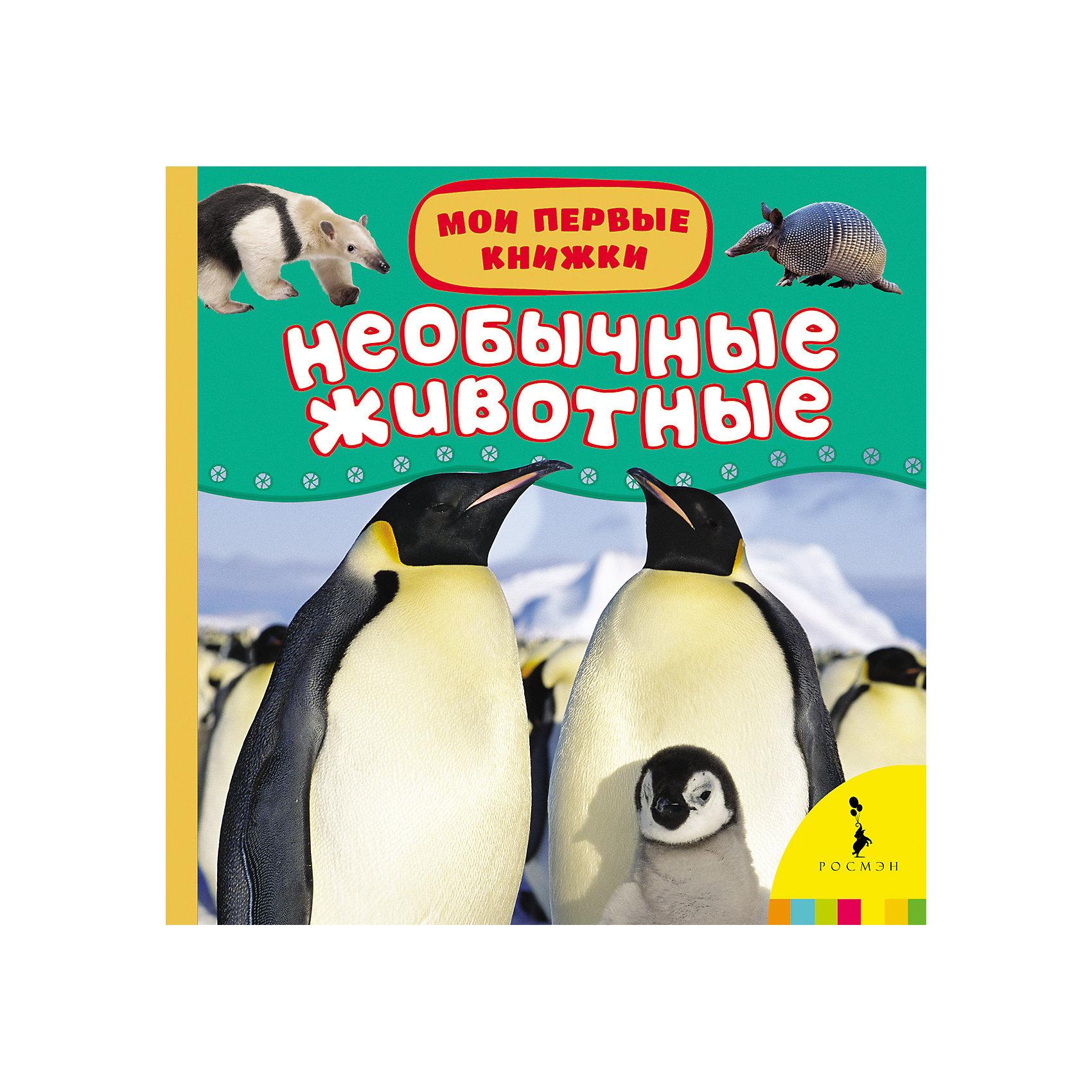 Мои первые книжки Необычные животныеРосмэн<br>Характеристики товара:<br><br>- цвет: разноцветный;<br>- материал: бумага;<br>- страниц: 14;<br>- формат: 17 х 17 см;<br>- обложка: картон;<br>- для чтения детям. <br><br>Издания серии Мои первые книжки - отличный способ занять ребенка! Эта красочная книга станет отличным подарком для родителей и малыша. Она содержит в себе полезную информацию и яркие картинки, которые так любят дети. Отличный способ привить малышу любовь к чтению и начать обучение!<br>Чтение и рассматривание картинок даже в юном возрасте помогает ребенку развивать память, концентрацию внимания и воображение. Издание произведено из качественных материалов, которые безопасны даже для самых маленьких.<br><br>Издание Необычные животные (Мои первые книжки) от компании Росмэн можно купить в нашем интернет-магазине.<br><br>Ширина мм: 165<br>Глубина мм: 165<br>Высота мм: 19<br>Вес г: 325<br>Возраст от месяцев: 0<br>Возраст до месяцев: 36<br>Пол: Унисекс<br>Возраст: Детский<br>SKU: 3895269