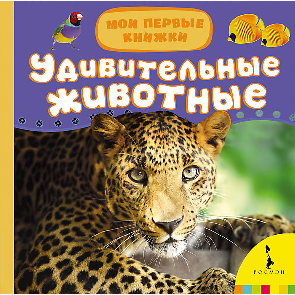 Мои первые книжки Удивительные животныеЭнциклопедии для малышей<br>Характеристики товара:<br><br>- цвет: разноцветный;<br>- материал: картон;<br>- страниц: 14;<br>- формат: 17 х 17 см;<br>- обложка: пухлая;<br>- цветные иллюстрации. <br><br>Издания серии Мои первые книжки - хороший способ занять ребенка! Эта красочная книга станет отличным подарком для родителей и малыша. Она содержит в себе рассказ о животных, которых так любят дети. Плюс - яркие фотографии. Отличный способ привить малышу любовь к чтению! Удобный формат и плотные странички позволят брать книгу с собой в поездки.<br>Чтение и рассматривание картинок даже в юном возрасте помогает ребенку развивать память, концентрацию внимания и воображение. Издание произведено из качественных материалов, которые безопасны даже для самых маленьких.<br><br>Издание Удивительные животные, Мои первые книжки от компании Росмэн можно купить в нашем интернет-магазине.<br>Ширина мм: 165; Глубина мм: 165; Высота мм: 19; Вес г: 325; Возраст от месяцев: 0; Возраст до месяцев: 36; Пол: Унисекс; Возраст: Детский; SKU: 3895270;