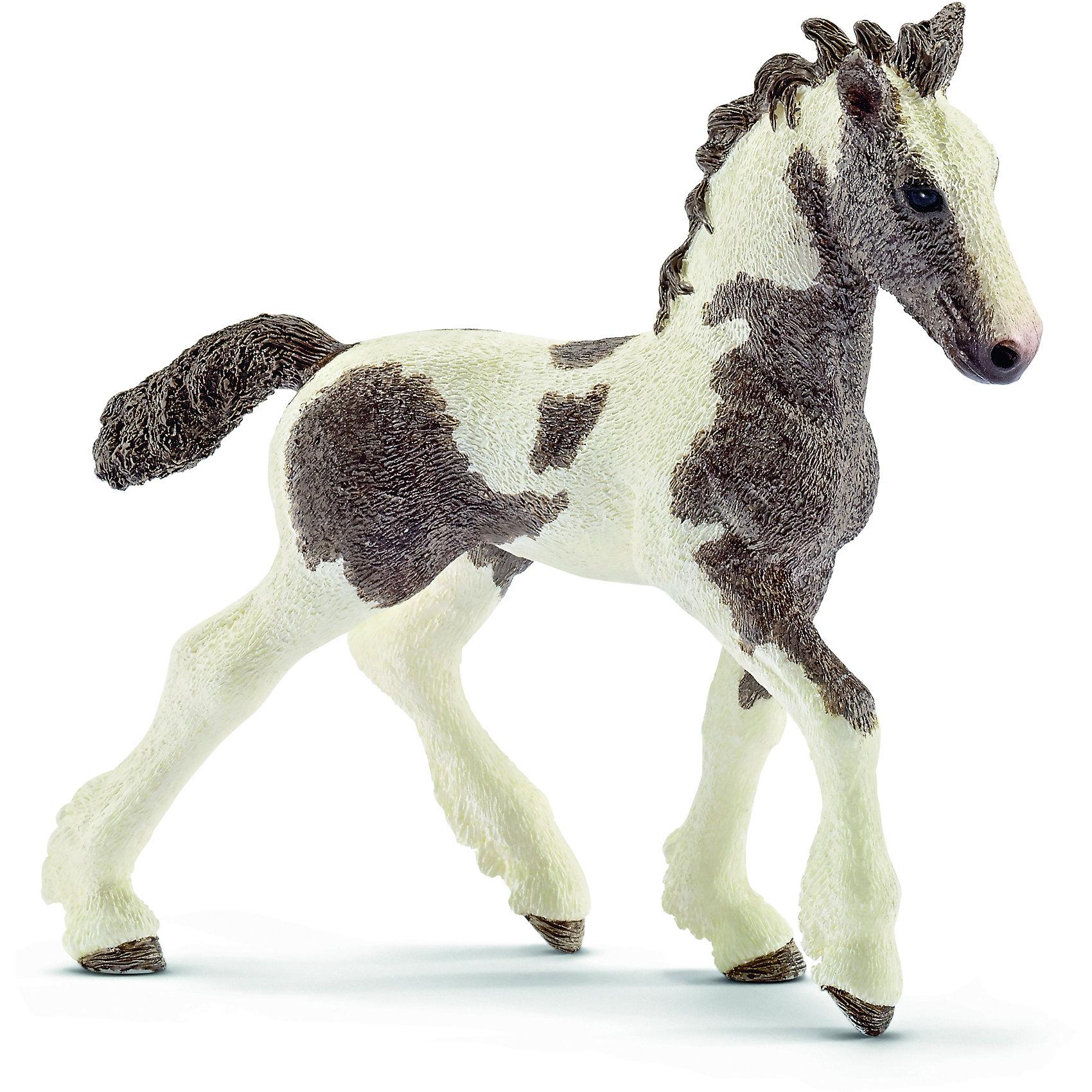 Жеребёнок Тинкер, SchleichМир животных<br>Жеребёнок Тинкер, Schleich (Шляйх) – это высококачественная коллекционная и игровая фигурка.<br>Фигурка жеребёнка Тинкер прекрасно разнообразит игру вашего ребенка и станет отличным пополнением коллекции его фигурок животных. Тинкер или Цыганская упряжная — порода лошадей, сформировавшаяся в Ирландии. В Германии и Голландии эта порода называется «тинкер», в Ирландии — «ирландский коб» или «местной пегой». Цыганская упряжная — универсальная лошадь, подходящая для начинающего всадника. Лошади флегматичны и спокойны. Они имеют средний рост, широкое тело. Голова лошади массивная и грубая, имеет бородку и горбатый профиль. У этой породы очень густые грива, чёлка и хвост. Круп лошади мощный и рельефный, спина прямая и короткая, шея сильная и короткая, плечи мощные. Ноги сильные и крепкие. Копыта очень прочные, сильно оброслые — густые фризы на копытах начинаются от скакательных и запястных суставов и закрывают почти всё копыто. <br><br>Прекрасно выполненные фигурки Schleich (Шляйх) являются максимально точной копией настоящих животных и отличаются высочайшим качеством игрушек ручной работы. Каждая фигурка разработана с учетом исследований в области педагогики и производится как настоящее произведение для маленьких детских ручек. Все фигурки Schleich (Шляйх) сделаны из гипоаллергенных высокотехнологичных материалов, раскрашены вручную и не вызывают аллергии у ребенка.<br><br>Дополнительная информация:<br><br>- Размер фигурки: 9 x 9,5 x 3 см.<br>- Материал: высококачественный каучуковый пластик<br><br>Фигурку Жеребёнка Тинкер, Schleich (Шляйх) можно купить в нашем интернет-магазине.<br><br>Ширина мм: 98<br>Глубина мм: 96<br>Высота мм: 27<br>Вес г: 42<br>Возраст от месяцев: 36<br>Возраст до месяцев: 96<br>Пол: Женский<br>Возраст: Детский<br>SKU: 3902499