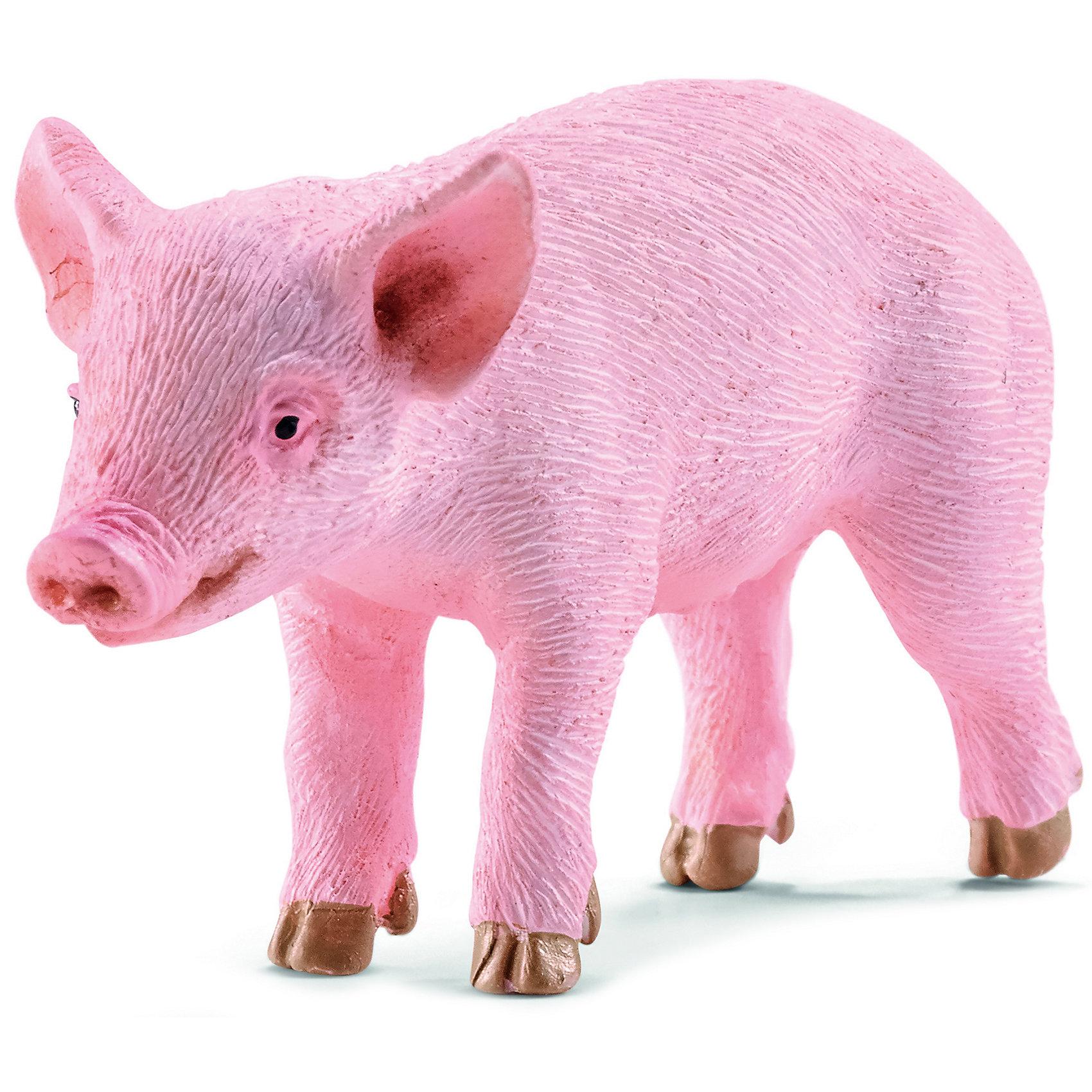 Поросенок, SchleichПоросенок, Schleich (Шляйх) – это высококачественная коллекционная и игровая фигурка.<br>Фигурка Поросенка прекрасно разнообразит игру вашего ребенка и станет отличным пополнением коллекции его фигурок животных. Свиньи являются одним из важнейших сельскохозяйственных животных. Бытует ошибочное мнение, что свиньи имеют пристрастие к валянию в грязи просто из любви к ней; на самом деле свиньи, таким образом, избавляются от кожных паразитов: высыхая, грязь отпадает вместе с паразитами. Кроме того, валяние в грязи служит им для охлаждения организма в жаркую погоду. Свиньи, являются очень умными животными и легко поддаются дрессировки. Благодаря высокому интеллекту свиньи сильно подвержены стрессам. Поросята очень привязаны к матерям, и если их разлучить, особенно в раннем возрасте, они это переживают очень болезненно: поросенок плохо ест и сильно теряет в весе. <br>Прекрасно выполненные фигурки Schleich (Шляйх) являются максимально точной копией настоящих животных и отличаются высочайшим качеством игрушек ручной работы. Каждая фигурка разработана с учетом исследований в области педагогики и производится как настоящее произведение для маленьких детских ручек. Все фигурки Schleich (Шляйх) сделаны из гипоаллергенных высокотехнологичных материалов, раскрашены вручную и не вызывают аллергии у ребенка.<br><br>Дополнительная информация:<br><br>- Размер фигурки: 5,7 x 3 x 1,8 см.<br>- Материал: высококачественный каучуковый пластик<br><br>Фигурку Поросенка, Schleich (Шляйх) можно купить в нашем интернет-магазине.<br><br>Ширина мм: 76<br>Глубина мм: 35<br>Высота мм: 20<br>Вес г: 7<br>Возраст от месяцев: 36<br>Возраст до месяцев: 96<br>Пол: Унисекс<br>Возраст: Детский<br>SKU: 3902508