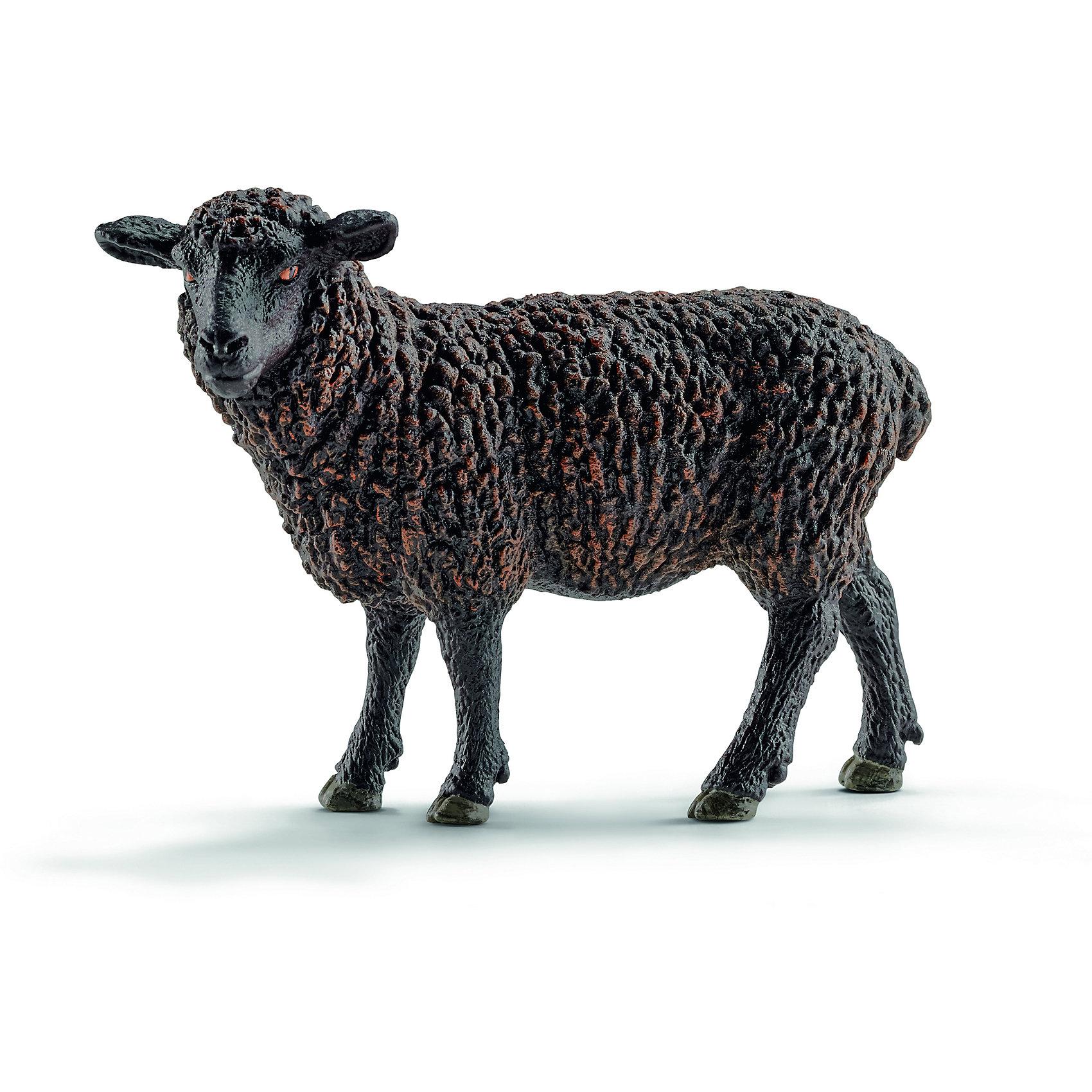 Черная овечка, SchleichМир животных<br>Черная овечка, Schleich (Шляйх) – это высококачественная коллекционная и игровая фигурка.<br>Фигурка Черной овечки прекрасно разнообразит игру вашего ребенка и станет отличным пополнением коллекции его фигурок животных. Типичный цвет овечьей шерсти белый, но иногда рождаются черные ягнята. Держать чёрных овец было коммерчески невыгодно, так как их шерсть низко ценилась, её невозможно было выкрасить в желаемый цвет. Поэтому чёрных овец отбраковывали, не допуская к размножению. Во многих европейских языках аналогом русского выражения «белая ворона» является «чёрная овца». <br>Прекрасно выполненные фигурки Schleich (Шляйх) являются максимально точной копией настоящих животных и отличаются высочайшим качеством игрушек ручной работы. Каждая фигурка разработана с учетом исследований в области педагогики и производится как настоящее произведение для маленьких детских ручек. Все фигурки Schleich (Шляйх) сделаны из гипоаллергенных высокотехнологичных материалов, раскрашены вручную и не вызывают аллергии у ребенка.<br><br>Дополнительная информация:<br><br>- Размер фигурки: 6,5 x 9 x 3,5 см.<br>- Материал: высококачественный каучуковый пластик<br><br>Фигурку Черной овечки, Schleich (Шляйх) можно купить в нашем интернет-магазине.<br><br>Ширина мм: 98<br>Глубина мм: 90<br>Высота мм: 32<br>Вес г: 57<br>Возраст от месяцев: 36<br>Возраст до месяцев: 96<br>Пол: Унисекс<br>Возраст: Детский<br>SKU: 3902509