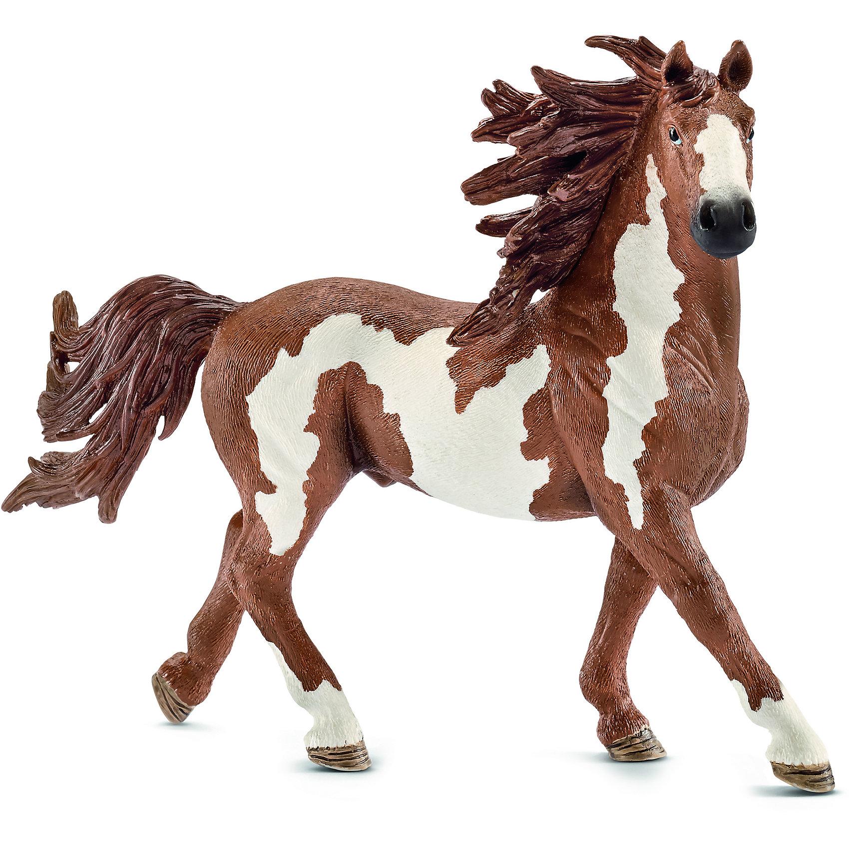 Schleich Жеребец Пинто, Schleich фигурки игрушки schleich фиордская лошадь жеребец