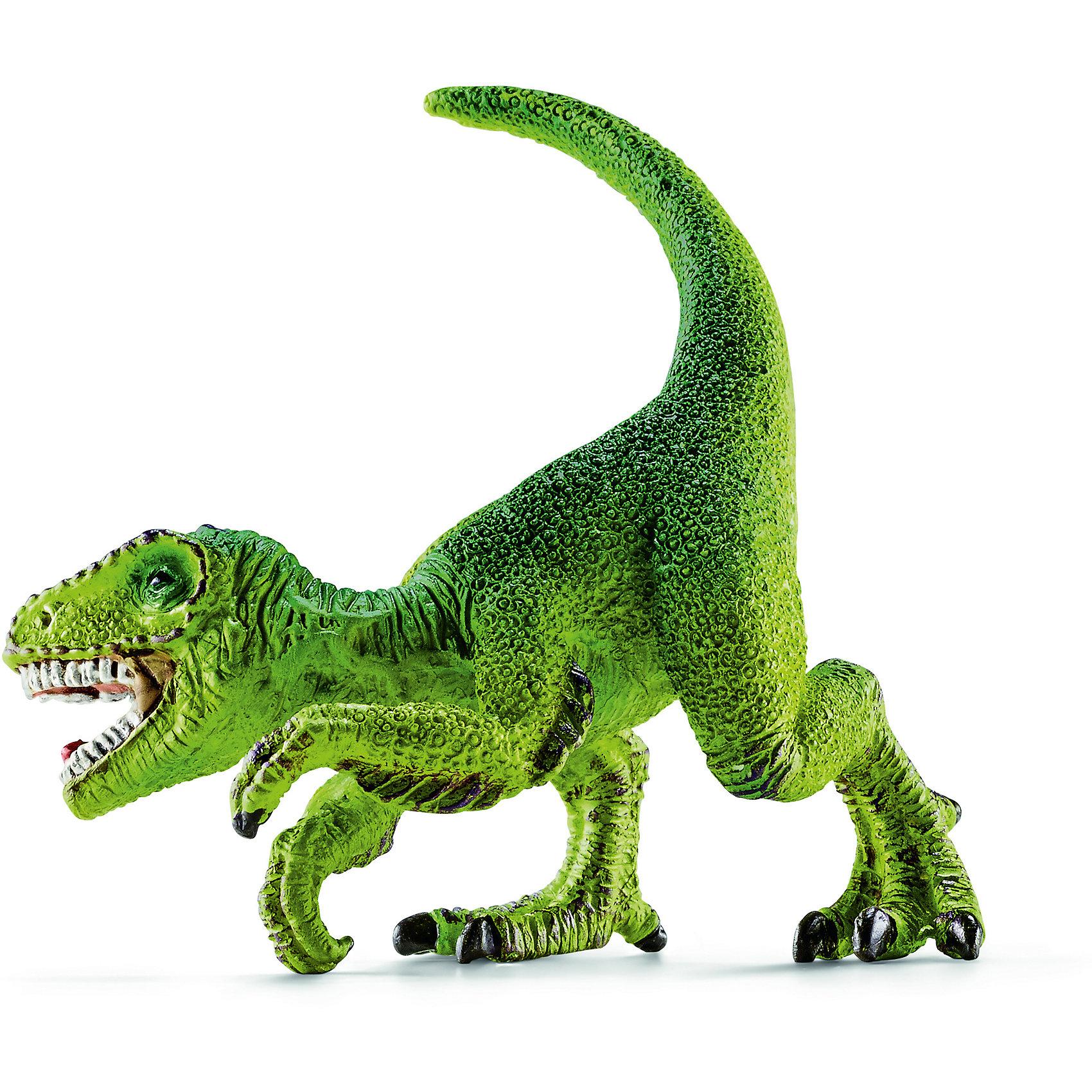 Велоцираптор, мини, SchleichДраконы и динозавры<br>Древний динозавр Велоцираптор, проживающий на земле много миллионов лет назад, представлен немецкой компанией Schleich (Шляйх) в виде стоящего на задних лапах динозавра яркого зеленого цвета. Велоцираптор отличается от своих сородичей длинным хвостом, мощными лапами и огромными острыми зубами, которые помогают ему находить пищу и сражаться с врагами.<br><br>Игрушка динозавра выполнена из качественного каучукового пластика, который безопасен для детей и не вызывает аллергию. <br><br>Дополнительная информация:<br><br>Материал: каучуковый пластик<br>Размер игрушки: 5 x 4.8 x 4 см<br><br>Велоцираптора, мини, Schleich (Шляйх) можно купить в нашем магазине.<br><br>Ширина мм: 93<br>Глубина мм: 71<br>Высота мм: 30<br>Вес г: 12<br>Возраст от месяцев: 36<br>Возраст до месяцев: 96<br>Пол: Мужской<br>Возраст: Детский<br>SKU: 3902516