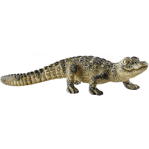 Детёныш крокодила, SchleichМир животных<br>Детёныш крокодила, Schleich (Шляйх) – это высококачественная коллекционная и игровая фигурка.<br>Фигурка Детёныша крокодила прекрасно разнообразит игру вашего ребенка и станет отличным пополнением коллекции его фигурок животных. Самка крокодила откладывает яйца в песок на отмели или зарывает в гнездо из грязи и гниющей листвы. Молодые крокодилы ещё внутри яиц, ко времени вылупления издают квакающие звуки, и мать раскапывает кладку, помогает потомству выбраться и переносит их в своей пасти в водоём. На пол крокодила влияет температура инкубации яиц: выше 32 °С - вылупится самец, от 28 до 30 °С - самка. Вылупившиеся детеныши невелики — всего до 28 см в длину. Самка печется о своем потомстве еще на протяжении двух лет. Подрастающие крокодилы питаются сначала насекомыми, увеличиваясь в размерах, ловят рыб и лягушек, и наконец, достигнув через 10 лет почти 2,5 м в длину, начинают охотиться на более крупных животных. Фигурка детеныша крокодила выполнена в бежево-зеленом цвете. У него длинный хвост и выразительные глаза. <br><br>Прекрасно выполненные фигурки Schleich (Шляйх) являются максимально точной копией настоящих животных и отличаются высочайшим качеством игрушек ручной работы. Каждая фигурка разработана с учетом исследований в области педагогики и производится как настоящее произведение для маленьких детских ручек. Все фигурки Schleich (Шляйх) сделаны из гипоаллергенных высокотехнологичных материалов, раскрашены вручную и не вызывают аллергии у ребенка.<br><br>Дополнительная информация:<br><br>- Размер фигурки: 2 x 8,5 x 2,5 см.<br>- Материал: высококачественный каучуковый пластик<br><br>Фигурку Детёныша крокодила, Schleich (Шляйх) можно купить в нашем интернет-магазине.<br><br>Ширина мм: 91<br>Глубина мм: 55<br>Высота мм: 22<br>Вес г: 7<br>Возраст от месяцев: 36<br>Возраст до месяцев: 96<br>Пол: Унисекс<br>Возраст: Детский<br>SKU: 3902535