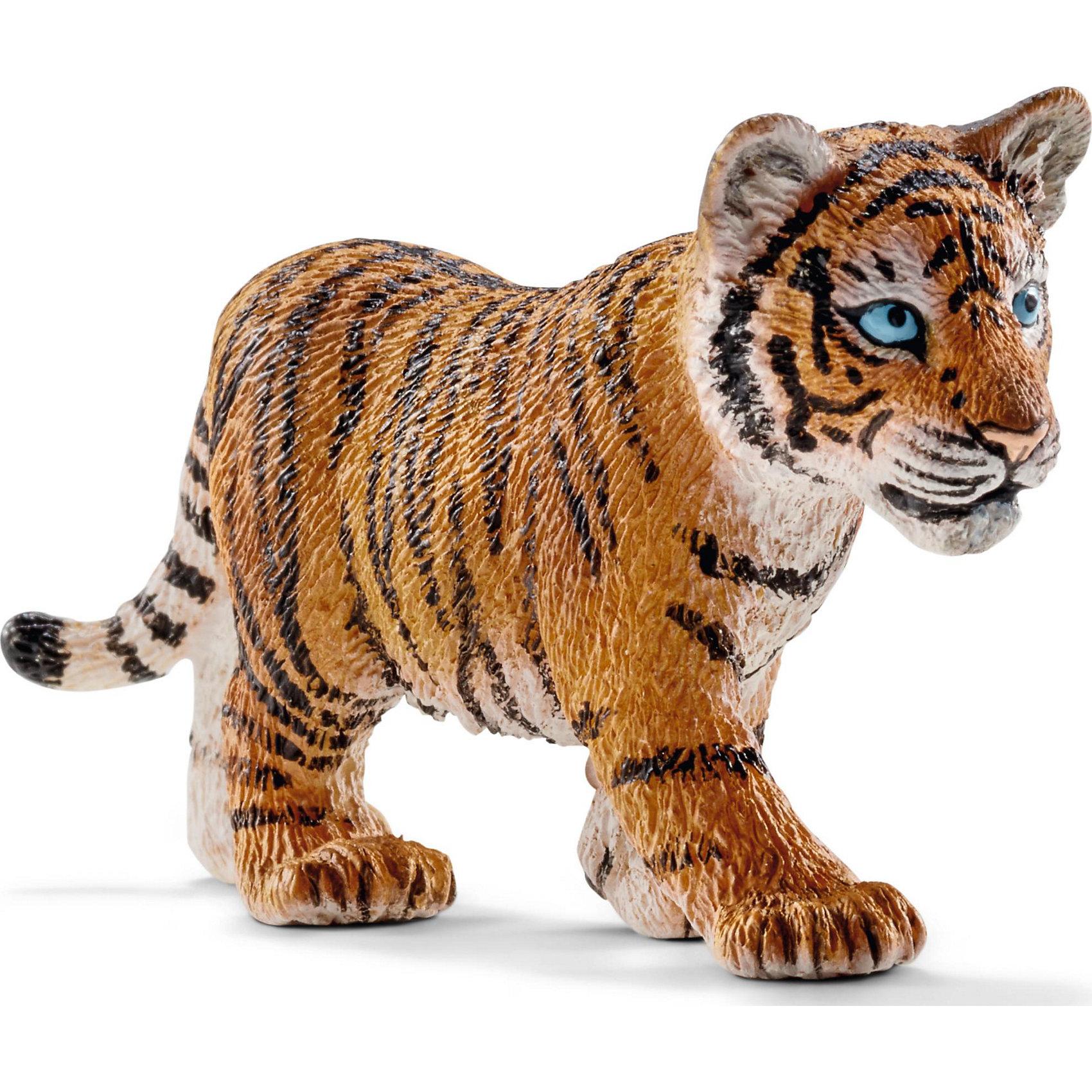 Тигр, SchleichМир животных<br>Тигр, Schleich (Шляйх) – это высококачественная коллекционная и игровая фигурка.<br>Фигурка Тигра прекрасно разнообразит игру вашего ребенка и станет отличным пополнением коллекции его фигурок животных. Тигр является крупнейшей и самой тяжёлой из диких кошек. Тигры очень быстрые и при этом незаметные хищники, а также великолепные пловцы. Тело у тигра массивное, вытянутое, мускулистое, гибкое. Передняя часть тела развита сильнее, чем задняя. Полосы на теле тигра разнообразны и уникальны. Основной функцией полос является маскировка хищника при охоте. Фигурка тигра выполнена в оранжевом цвете с черными полосками. Тигр стоит на четырех лапах, у него яркие голубые глаза. <br>Прекрасно выполненные фигурки Schleich (Шляйх) являются максимально точной копией настоящих животных и отличаются высочайшим качеством игрушек ручной работы. Каждая фигурка разработана с учетом исследований в области педагогики и производится как настоящее произведение для маленьких детских ручек. Все фигурки Schleich (Шляйх) сделаны из гипоаллергенных высокотехнологичных материалов, раскрашены вручную и не вызывают аллергии у ребенка.<br><br>Дополнительная информация:<br><br>- Размер фигурки: 4 x 7 x 2 см.<br>- Материал: высококачественный каучуковый пластик<br><br>Фигурку Тигра, Schleich (Шляйх) можно купить в нашем интернет-магазине.<br><br>Ширина мм: 78<br>Глубина мм: 34<br>Высота мм: 20<br>Вес г: 16<br>Возраст от месяцев: 36<br>Возраст до месяцев: 96<br>Пол: Унисекс<br>Возраст: Детский<br>SKU: 3902537