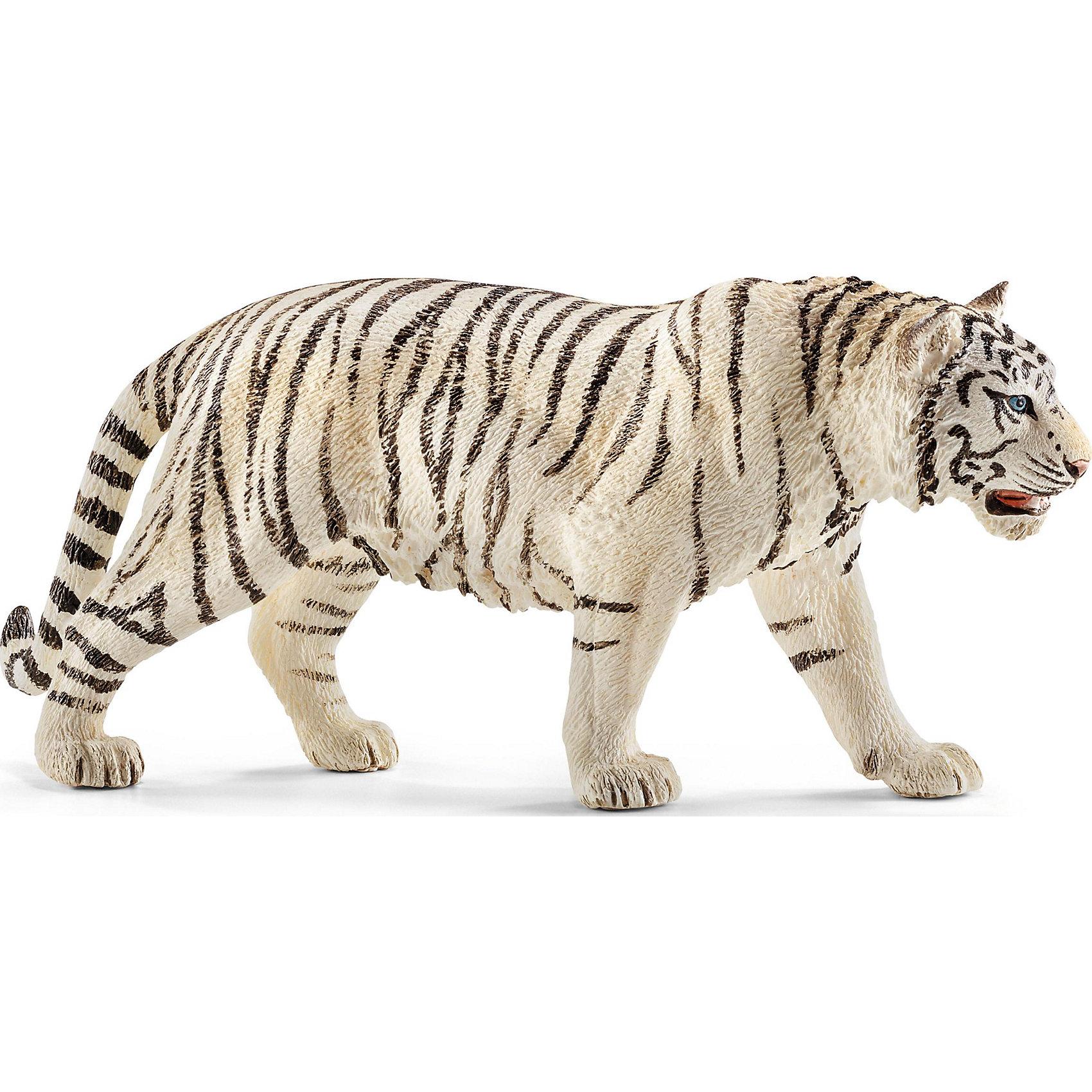 Тигр белый, SchleichМир животных<br>Тигр белый, Schleich (Шляйх) – это высококачественная коллекционная и игровая фигурка.<br>Фигурка Тигра белого прекрасно разнообразит игру вашего ребенка и станет отличным пополнением коллекции его фигурок животных. Белые тигры невероятно красивые и редкие животные. Отдельным подвидом не считаются. Альбиносами их тоже считать нельзя - иначе плоски тоже должны быть белыми.  А у этого тигра белая шкура, чёрные полосы и всегда голубые глаза. Как правило, белые тигры мельче обычных бенгальских. Белые тигры остались только в зоопарках. Печально, но последний белый тигр в природе был застрелен в 1958 году. <br>Прекрасно выполненные фигурки Schleich (Шляйх) являются максимально точной копией настоящих животных и отличаются высочайшим качеством игрушек ручной работы. Каждая фигурка разработана с учетом исследований в области педагогики и производится как настоящее произведение для маленьких детских ручек. Все фигурки Schleich (Шляйх) сделаны из гипоаллергенных высокотехнологичных материалов, раскрашены вручную и не вызывают аллергии у ребенка.<br><br>Дополнительная информация:<br><br>- Размер фигурки: 6 x 13 x 3 см.<br>- Материал: высококачественный каучуковый пластик<br><br>Фигурку Тигра белого, Schleich (Шляйх) можно купить в нашем интернет-магазине.<br><br>Ширина мм: 132<br>Глубина мм: 86<br>Высота мм: 32<br>Вес г: 72<br>Возраст от месяцев: 36<br>Возраст до месяцев: 96<br>Пол: Унисекс<br>Возраст: Детский<br>SKU: 3902538