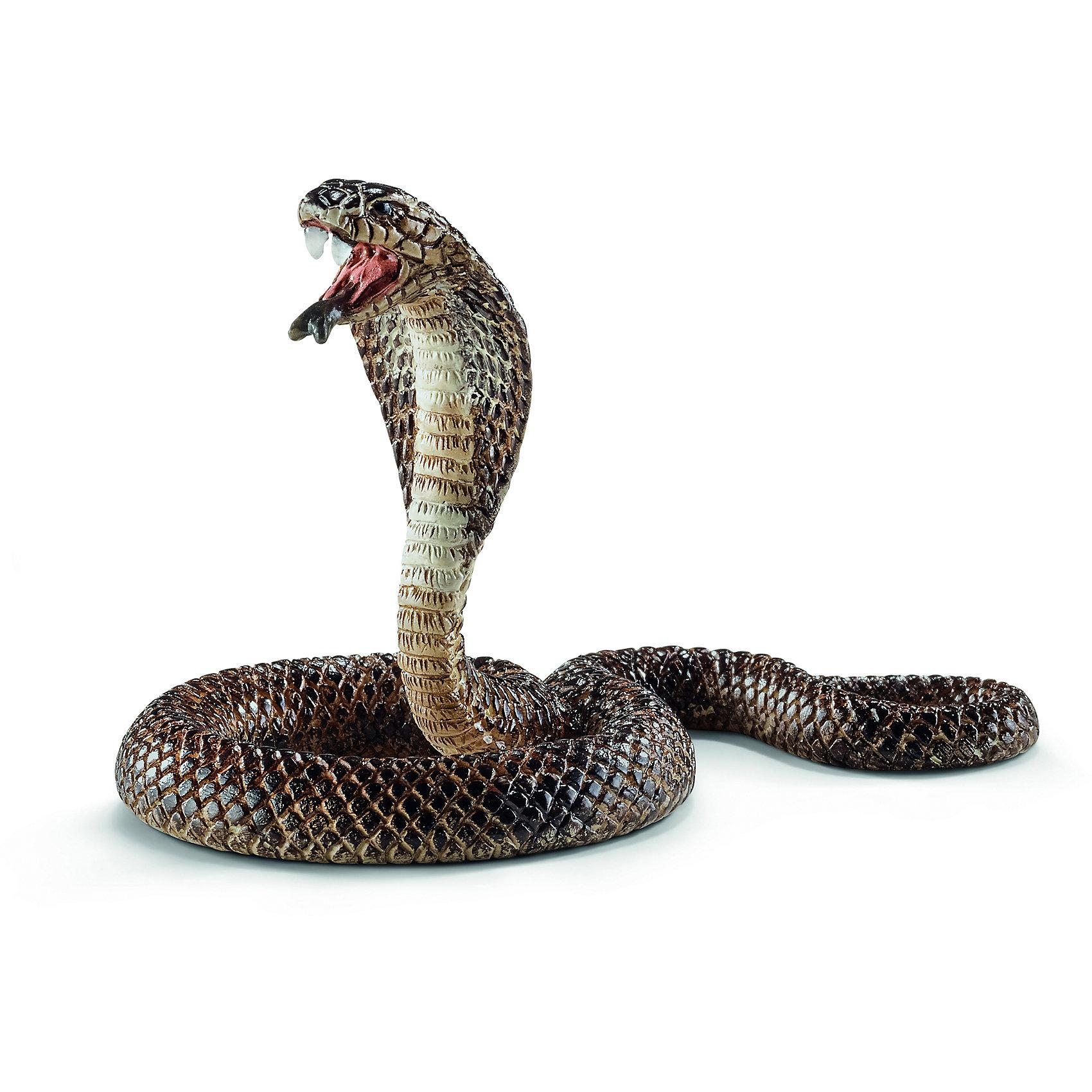 Кобра, SchleichМир животных<br>Кобра, Schleich (Шляйх) – это высококачественная коллекционная и игровая фигурка.<br>Фигурка Кобры прекрасно разнообразит игру вашего ребенка и станет отличным пополнением коллекции его фигурок животных. Кобра - опасная ядовитая змея. Её длина в природе может достигать 5,5 метров! Кобры пугают свою жертву, раздувая свою шею, как широкий капюшон. Фигурка кобры выполнена в бежево-коричневом цвете. У кобры открыт рот и широко расправлен капюшон. <br>Прекрасно выполненные фигурки Schleich (Шляйх) являются максимально точной копией настоящих животных и отличаются высочайшим качеством игрушек ручной работы. Каждая фигурка разработана с учетом исследований в области педагогики и производится как настоящее произведение для маленьких детских ручек. Все фигурки Schleich (Шляйх) сделаны из гипоаллергенных высокотехнологичных материалов, раскрашены вручную и не вызывают аллергии у ребенка.<br><br>Дополнительная информация:<br><br>- Размер фигурки: 4 x 6 x 5 см.<br>- Материал: высококачественный каучуковый пластик<br><br>Фигурку Кобры, Schleich (Шляйх) можно купить в нашем интернет-магазине.<br><br>Ширина мм: 88<br>Глубина мм: 53<br>Высота мм: 17<br>Вес г: 8<br>Возраст от месяцев: 36<br>Возраст до месяцев: 96<br>Пол: Унисекс<br>Возраст: Детский<br>SKU: 3902540