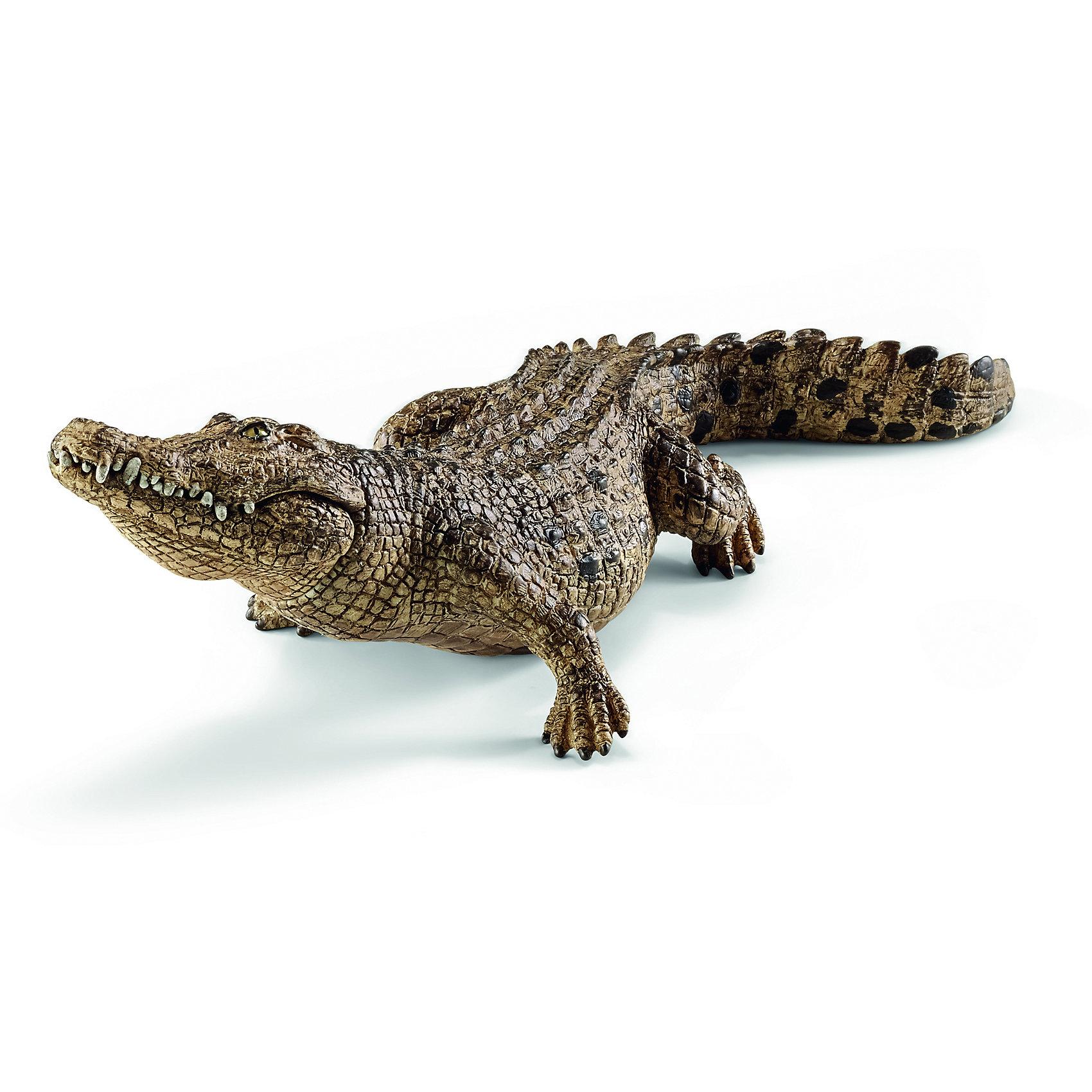 Крокодил, SchleichМир животных<br>Крокодил, Schleich (Шляйх) – это высококачественная коллекционная и игровая фигурка.<br>Фигурка Крокодила прекрасно разнообразит игру вашего ребенка и станет отличным пополнением коллекции его фигурок животных. Морской крокодил самый крупный в мире наземный, или прибрежный хищник. Самцы этого вида могут достигать 7 м длины, при весе до 2000 кг. Этот крокодил может жить в соленой воде, но, как правило, находится в мангровых болотах, дельтах, лагунах и в нижнем течении рек. Крокодил имеет длинный мускулистый хвост, короткие ноги, расположенные по бокам туловища, чешуйчатую кожу, покрытую рядами остеодерм. Глаза крокодила снабжены третьим веком для дополнительной защиты и имеют специальные железы, которые позволяют промывать их слезами, так же выводя избытки соли. Ноздри, уши и глаза расположены в верхней части головы, благодаря чему крокодил может почти полностью погружаться в воду, оставляя их на поверхности. Фигурка крокодила выполнена в бежево-зеленом цвете. Челюсть крокодила подвижна, что делает фигурку интересной для игры и максимально реалистичной. <br>Прекрасно выполненные фигурки Schleich (Шляйх) являются максимально точной копией настоящих животных и отличаются высочайшим качеством игрушек ручной работы. Каждая фигурка разработана с учетом исследований в области педагогики и производится как настоящее произведение для маленьких детских ручек. Все фигурки Schleich (Шляйх) сделаны из гипоаллергенных высокотехнологичных материалов, раскрашены вручную и не вызывают аллергии у ребенка.<br><br>Дополнительная информация:<br><br>- Размер фигурки: 6,9 x 5,1 x 18 см.<br>- Материал: высококачественный каучуковый пластик<br><br>Фигурку Крокодила, Schleich (Шляйх) можно купить в нашем интернет-магазине.<br><br>Ширина мм: 176<br>Глубина мм: 71<br>Высота мм: 50<br>Вес г: 107<br>Возраст от месяцев: 36<br>Возраст до месяцев: 96<br>Пол: Унисекс<br>Возраст: Детский<br>SKU: 3902543