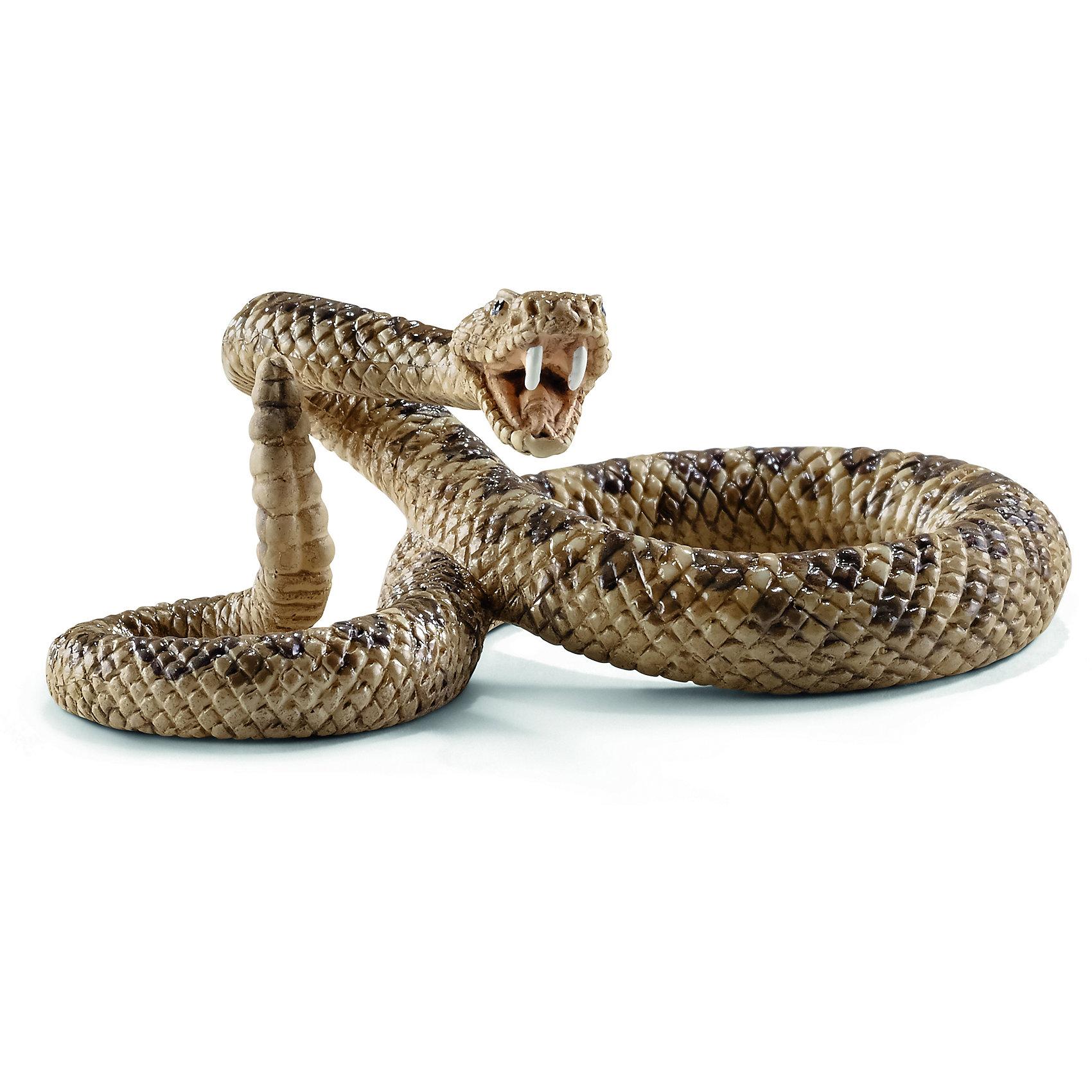 Гремучая змея, SchleichМир животных<br>Гремучая змея, Schleich (Шляйх) – это высококачественная коллекционная и игровая фигурка.<br>Фигурка Гремучей змеи прекрасно разнообразит игру вашего ребенка и станет отличным пополнением коллекции его фигурок животных. Гремучая змея - опаснейшая ядовитая змея, укус которой смертелен для человека. Характерная особенность — наличие хвостового погремка из ороговелых кольцеподобных образований, при вибрации которых возникает треск — акустический сигнал, которым змея предупреждает врагов об опасности. <br>Прекрасно выполненные фигурки Schleich (Шляйх) являются максимально точной копией настоящих животных и отличаются высочайшим качеством игрушек ручной работы. Каждая фигурка разработана с учетом исследований в области педагогики и производится как настоящее произведение для маленьких детских ручек. Все фигурки Schleich (Шляйх) сделаны из гипоаллергенных высокотехнологичных материалов, раскрашены вручную и не вызывают аллергии у ребенка.<br><br>Дополнительная информация:<br><br>- Размер фигурки: 6 х 4 х 2,5 см.<br>- Материал: высококачественный каучуковый пластик<br><br>Фигурку Гремучей змеи, Schleich (Шляйх) можно купить в нашем интернет-магазине.<br><br>Ширина мм: 92<br>Глубина мм: 45<br>Высота мм: 32<br>Вес г: 14<br>Возраст от месяцев: 36<br>Возраст до месяцев: 96<br>Пол: Унисекс<br>Возраст: Детский<br>SKU: 3902547