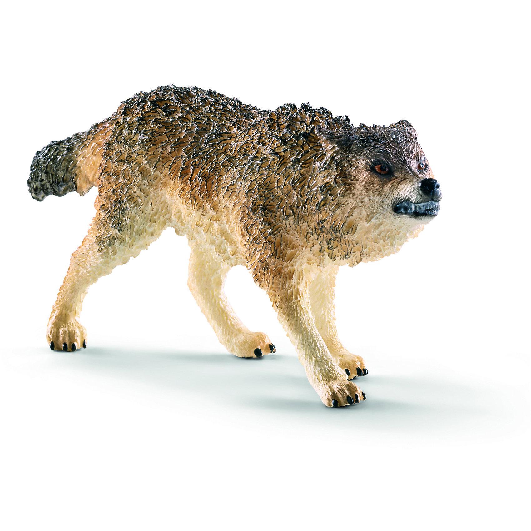 Волк, SchleichМир животных<br>Волк, Schleich (Шляйх) – это высококачественная коллекционная и игровая фигурка.<br>Фигурка Волка прекрасно разнообразит игру вашего ребенка и станет отличным пополнением коллекции его фигурок животных. Родственники обыкновенного волка - койот и шакал. Волк - прямой предок современных собак. Волки - санитары леса. Уничтожают слабых или чрезмерно размножившихся животных, регулируя баланс экосистемы. Волки - хищные животные, в голодное время не брезгуют и падалью. Вой волка в тундре может распространяться до 8 км. Так волки общаются, передавая по цепочке информацию о движущихся стадах. Волк может разгоняться до 60 км/ ч и делать ночные переходы длиной до 80 км. Стая волков может разделиться во время охоты. Часть волков будет гнать дичь, сменяя друг друга; другие волки будут поджидать в засаде. <br>Прекрасно выполненные фигурки Schleich (Шляйх) являются максимально точной копией настоящих животных и отличаются высочайшим качеством игрушек ручной работы. Каждая фигурка разработана с учетом исследований в области педагогики и производится как настоящее произведение для маленьких детских ручек. Все фигурки Schleich (Шляйх) сделаны из гипоаллергенных высокотехнологичных материалов, раскрашены вручную и не вызывают аллергии у ребенка.<br><br>Дополнительная информация:<br><br>- Размер фигурки: 4,4 х 2,5 х 11 см.<br>- Материал: высококачественный каучуковый пластик<br><br>Фигурку Волка, Schleich (Шляйх) можно купить в нашем интернет-магазине.<br><br>Ширина мм: 114<br>Глубина мм: 63<br>Высота мм: 30<br>Вес г: 44<br>Возраст от месяцев: 36<br>Возраст до месяцев: 96<br>Пол: Унисекс<br>Возраст: Детский<br>SKU: 3902548