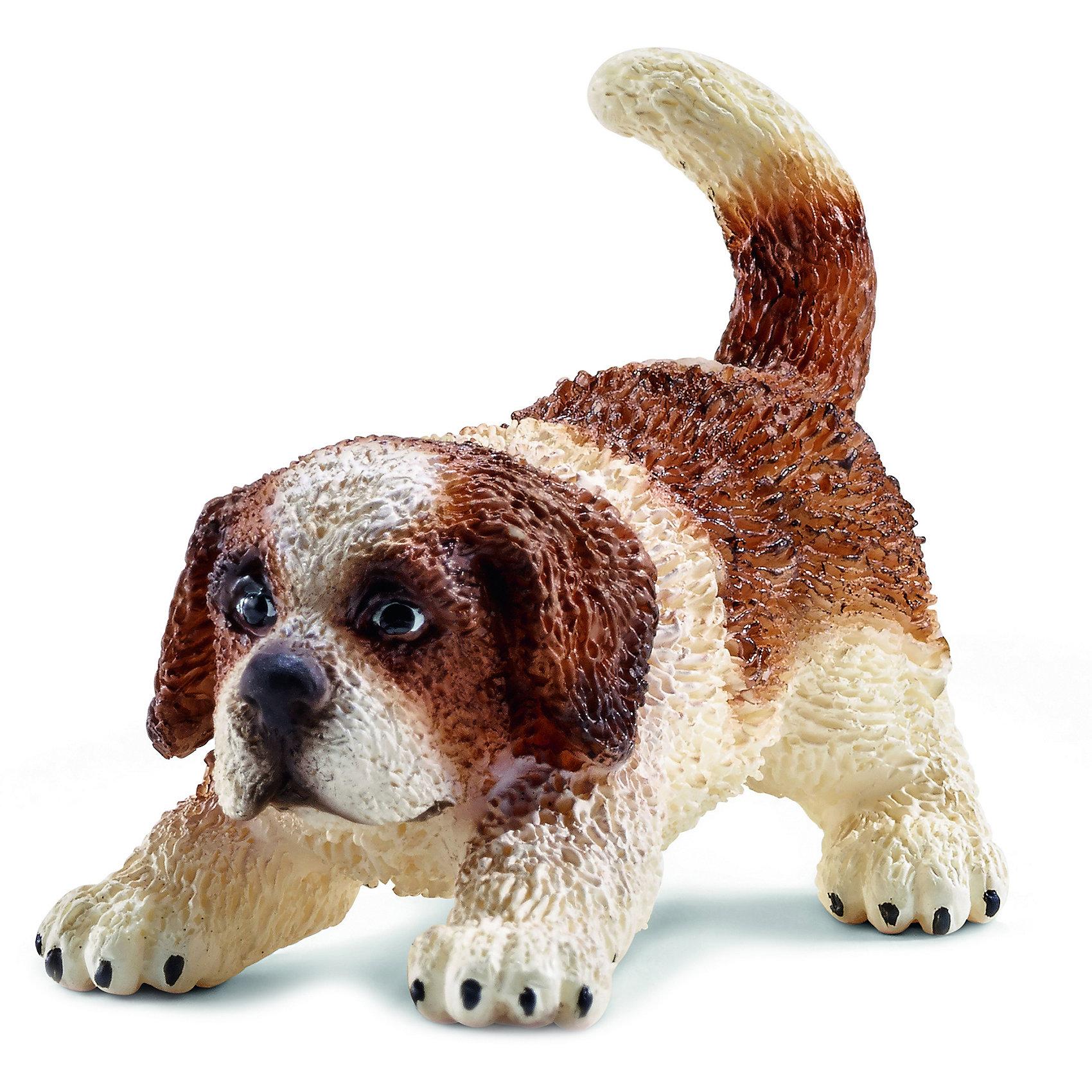 Щенок Сенбернара, SchleichМир животных<br>Щенок Сенбернара, Schleich (Шляйх) – это высококачественная коллекционная и игровая фигурка.<br>Фигурка Щенка Сенбернара прекрасно разнообразит игру вашего ребенка и станет отличным пополнением коллекции его фигурок животных. Сенбернар – это очень уравновешенная и спокойная собака, которая всегда старается угодить своему хозяину и выполнить все его поручения. Он отличный спасатель, неплохой сторож и может послужить даже нянькой, так как лает чрезвычайно редко, любит детей и старается оградить их от опасности. <br>Прекрасно выполненные фигурки Schleich (Шляйх) являются максимально точной копией настоящих животных и отличаются высочайшим качеством игрушек ручной работы. Каждая фигурка разработана с учетом исследований в области педагогики и производится как настоящее произведение для маленьких детских ручек. Все фигурки Schleich (Шляйх) сделаны из гипоаллергенных высокотехнологичных материалов, раскрашены вручную и не вызывают аллергии у ребенка.<br> <br>Дополнительная информация:<br><br>- Размер фигурки: 3,1 х 4,6 х 2,5 см.<br>- Материал: высококачественный каучуковый пластик<br><br>Фигурку Щенка Сенбернара, Schleich (Шляйх) можно купить в нашем интернет-магазине.<br><br>Ширина мм: 118<br>Глубина мм: 4<br>Высота мм: 20<br>Вес г: 11<br>Возраст от месяцев: 36<br>Возраст до месяцев: 96<br>Пол: Унисекс<br>Возраст: Детский<br>SKU: 3902555